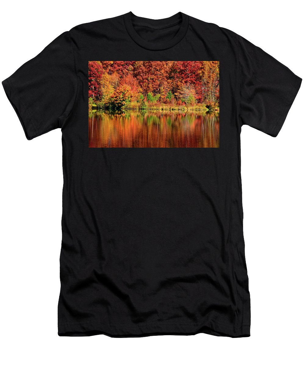Fall Men's T-Shirt (Athletic Fit) featuring the photograph Fall Foliage by Ronda Ryan