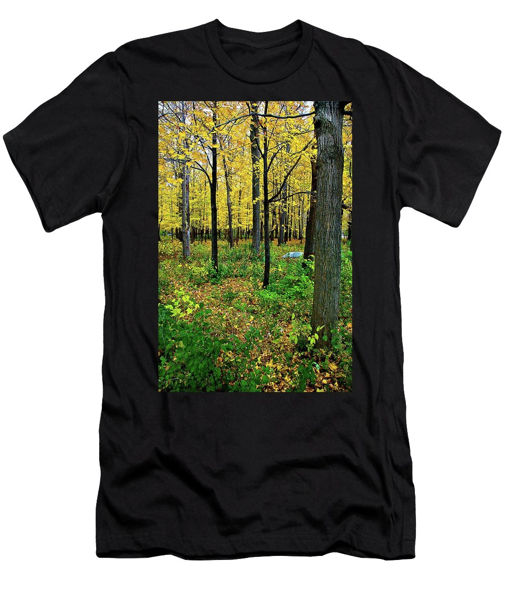 Fall Men's T-Shirt (Athletic Fit) featuring the photograph Fall Fusion by Burney Lieberman