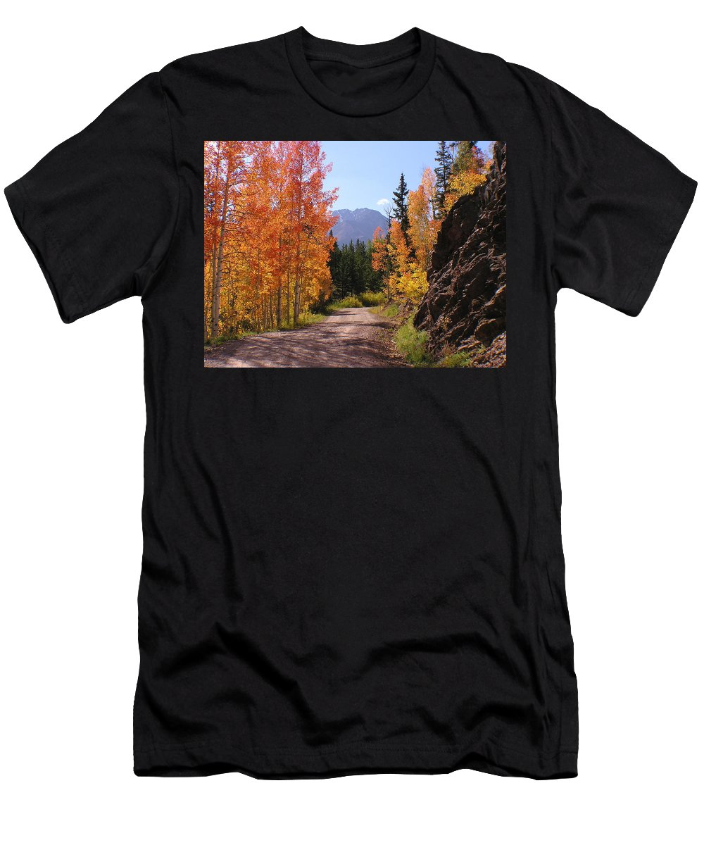 Trees Men's T-Shirt (Athletic Fit) featuring the photograph Fall In Colorado by Carol Milisen