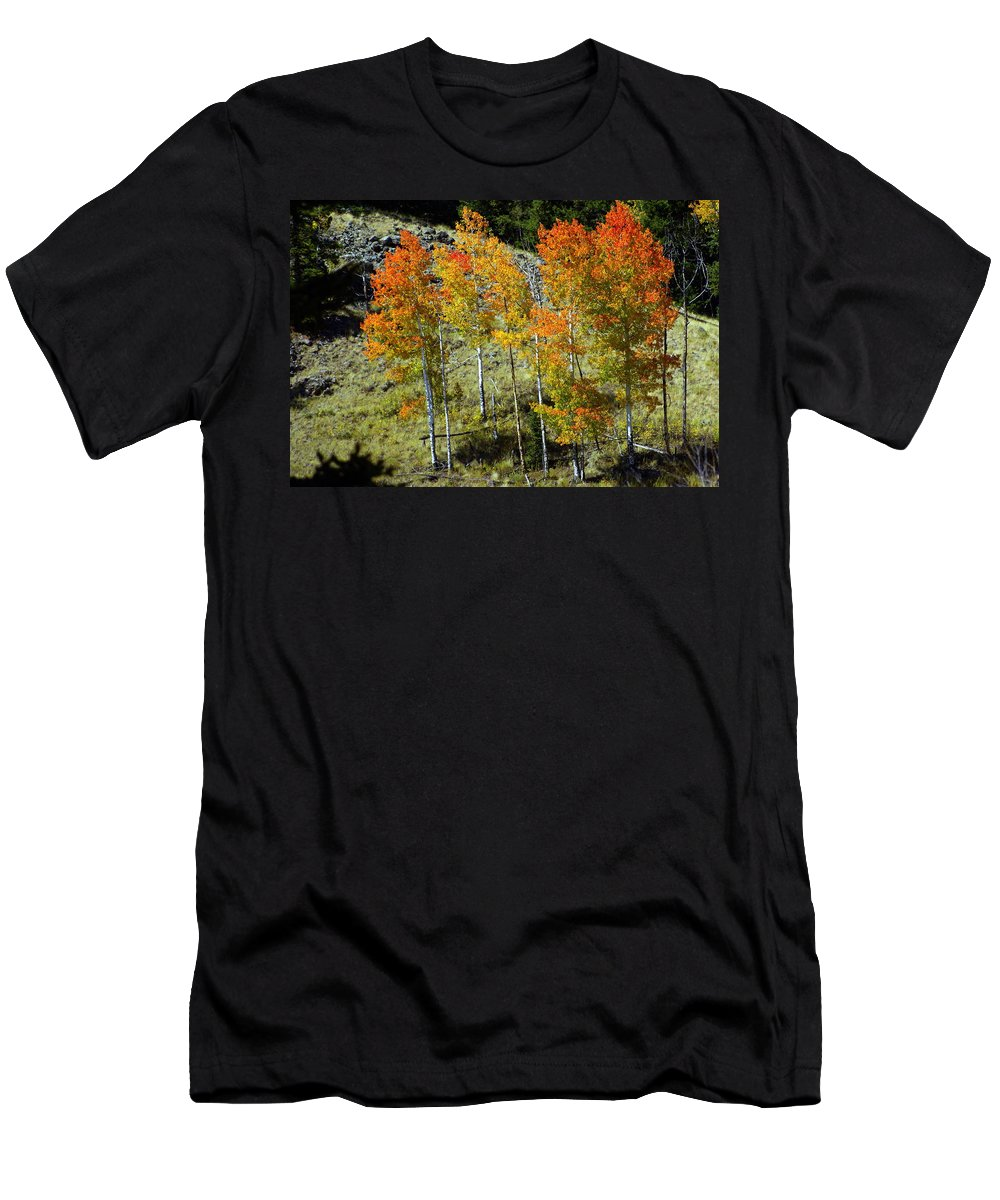 Men's T-Shirt (Athletic Fit) featuring the photograph Fall In Colorado by Marty Koch