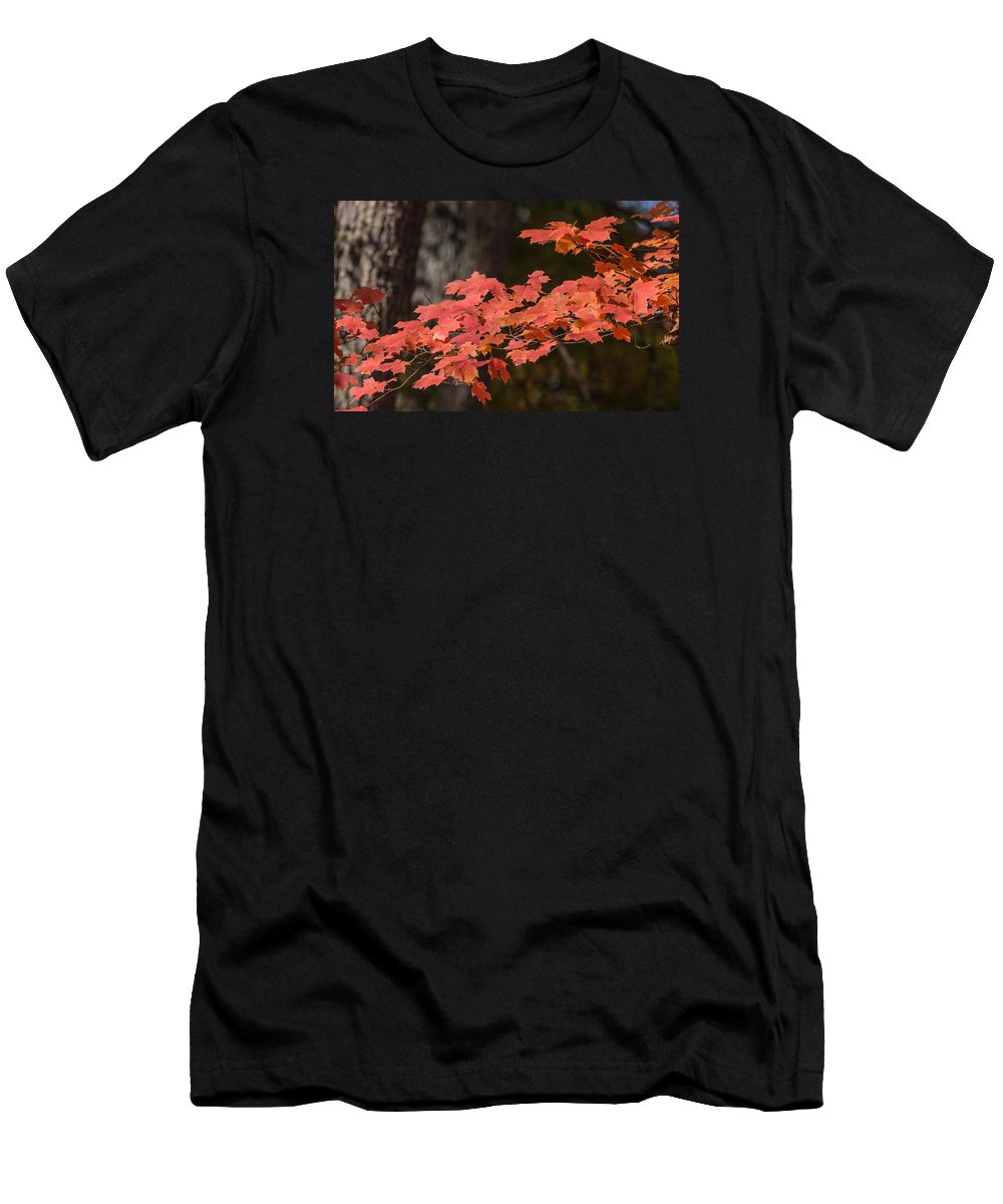 Landscape Men's T-Shirt (Athletic Fit) featuring the photograph Fall Leaves by Naga Bhargav Garaga