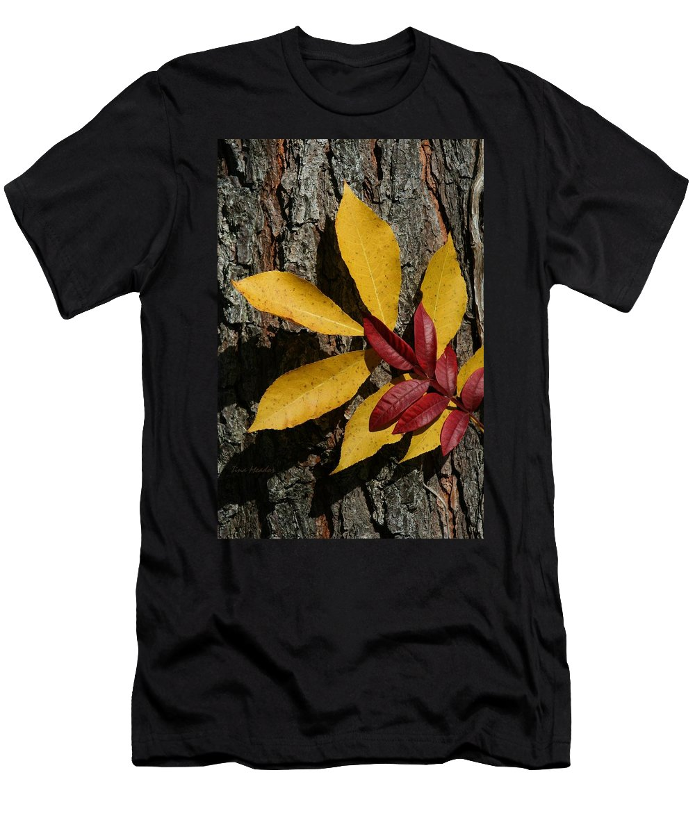 Fall Men's T-Shirt (Athletic Fit) featuring the photograph Fall Leaves by Tina Meador