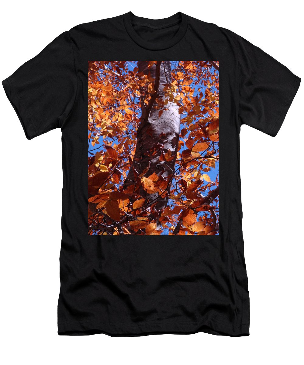Landscape Men's T-Shirt (Athletic Fit) featuring the photograph Fall Tree by Mary Halpin