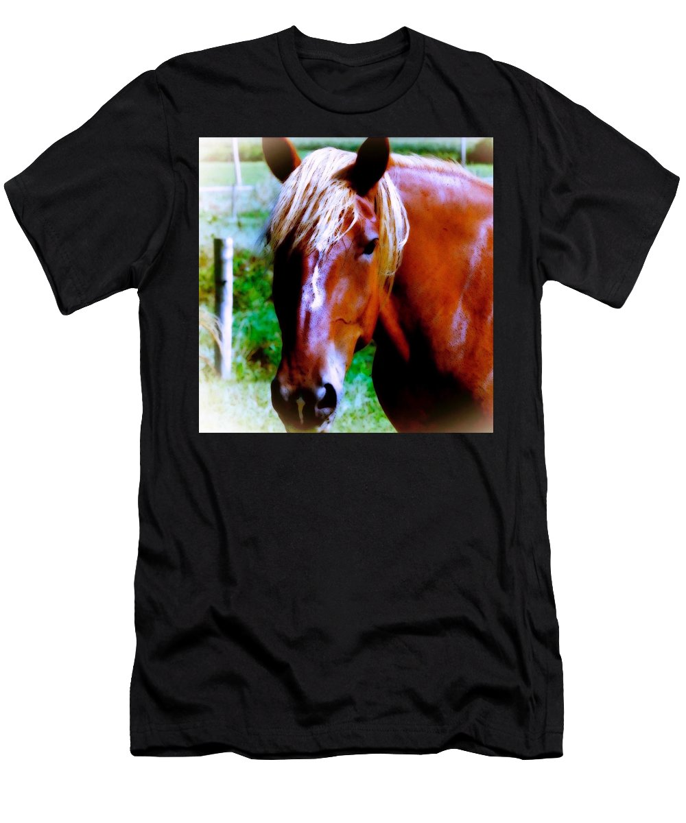 Maggievlazny Men's T-Shirt (Athletic Fit) featuring the photograph Horse Portrait by Femina Photo Art By Maggie