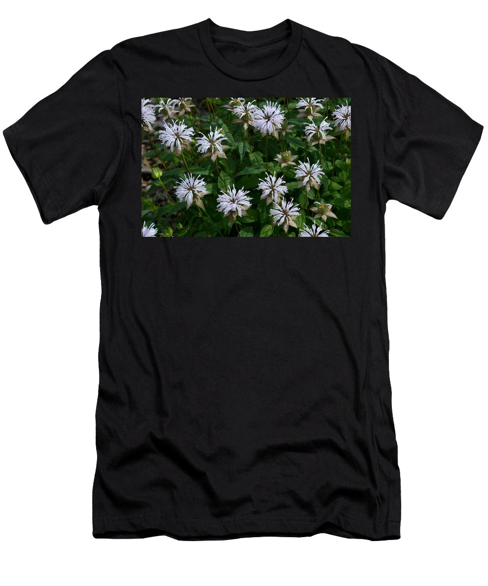Flower Men's T-Shirt (Athletic Fit) featuring the photograph Feathery Petal Flowers by Belinda Stucki