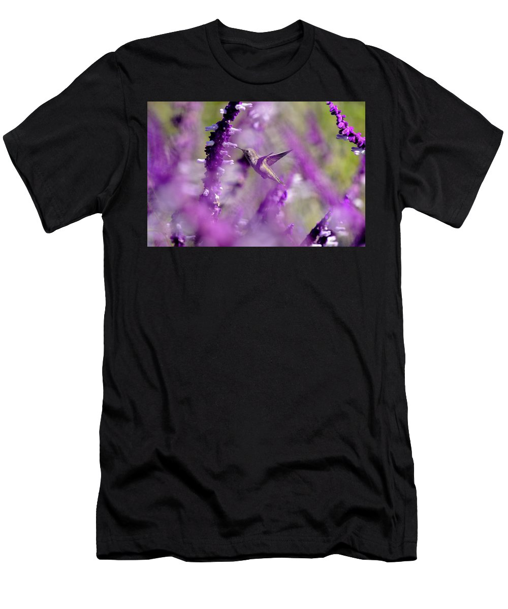Linda Brody Men's T-Shirt (Athletic Fit) featuring the photograph Feeding In The Midst Of Purple 1 by Linda Brody