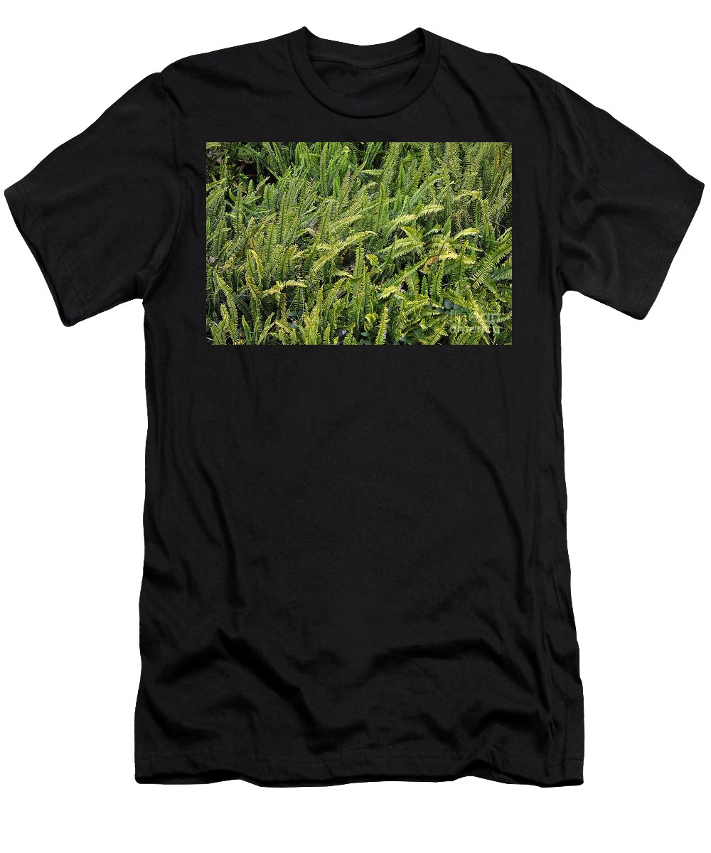 Clay Men's T-Shirt (Athletic Fit) featuring the photograph Fern by Clayton Bruster