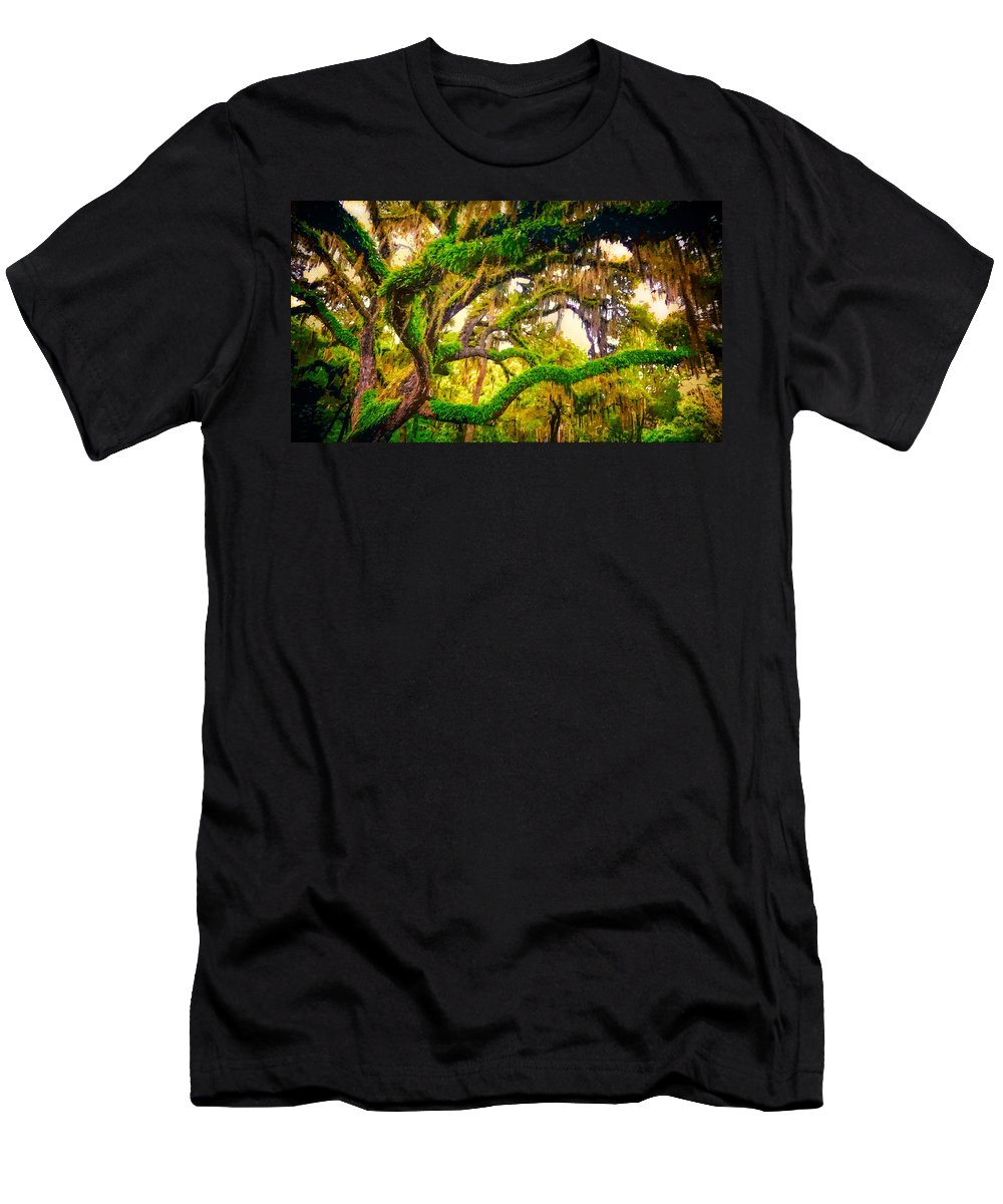 Trees Men's T-Shirt (Athletic Fit) featuring the photograph Ferns On Florida Oaks by Peter Hogg