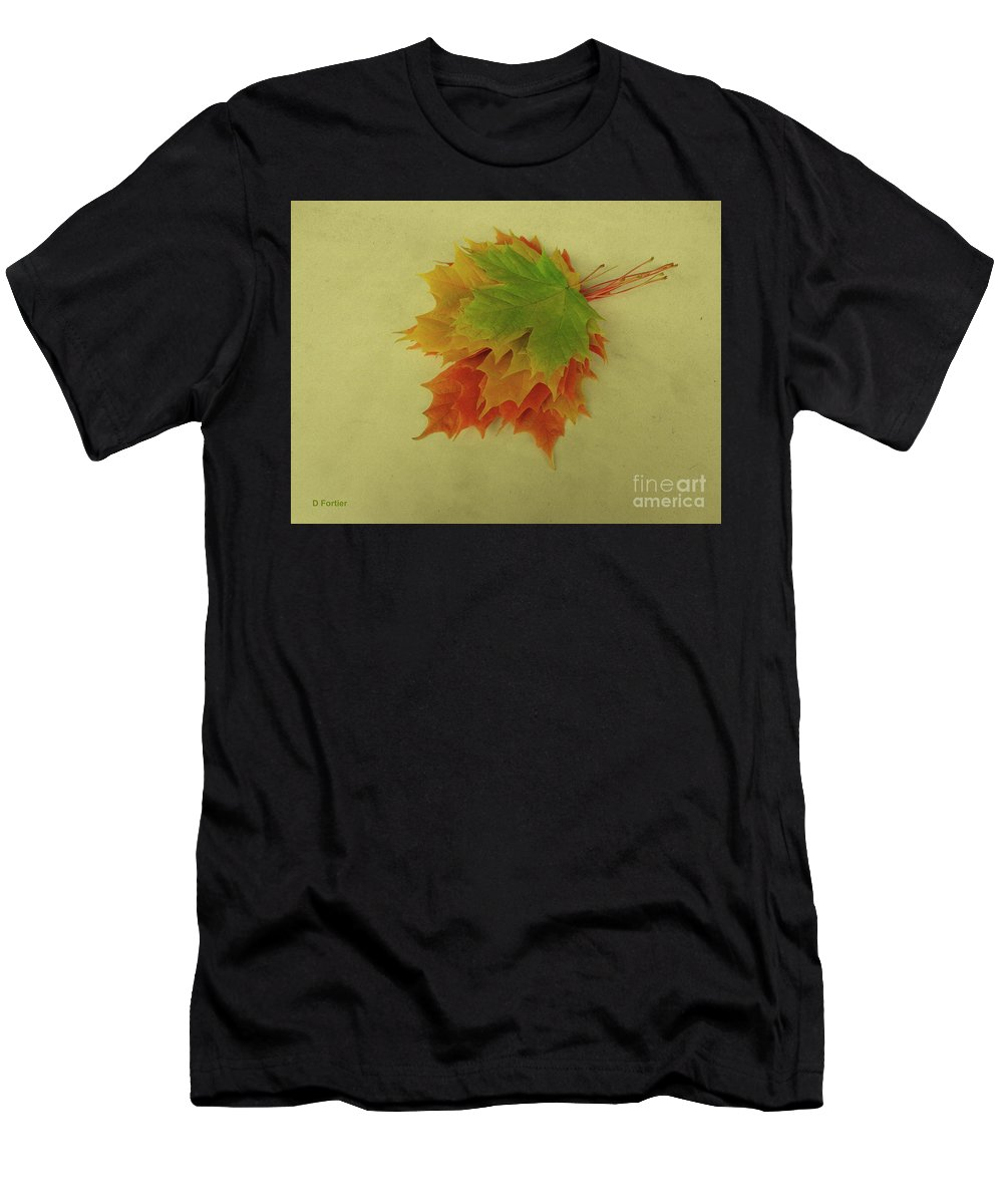 Season Men's T-Shirt (Athletic Fit) featuring the photograph Feuilles D'automne I / Fall Leaves I by Dominique Fortier