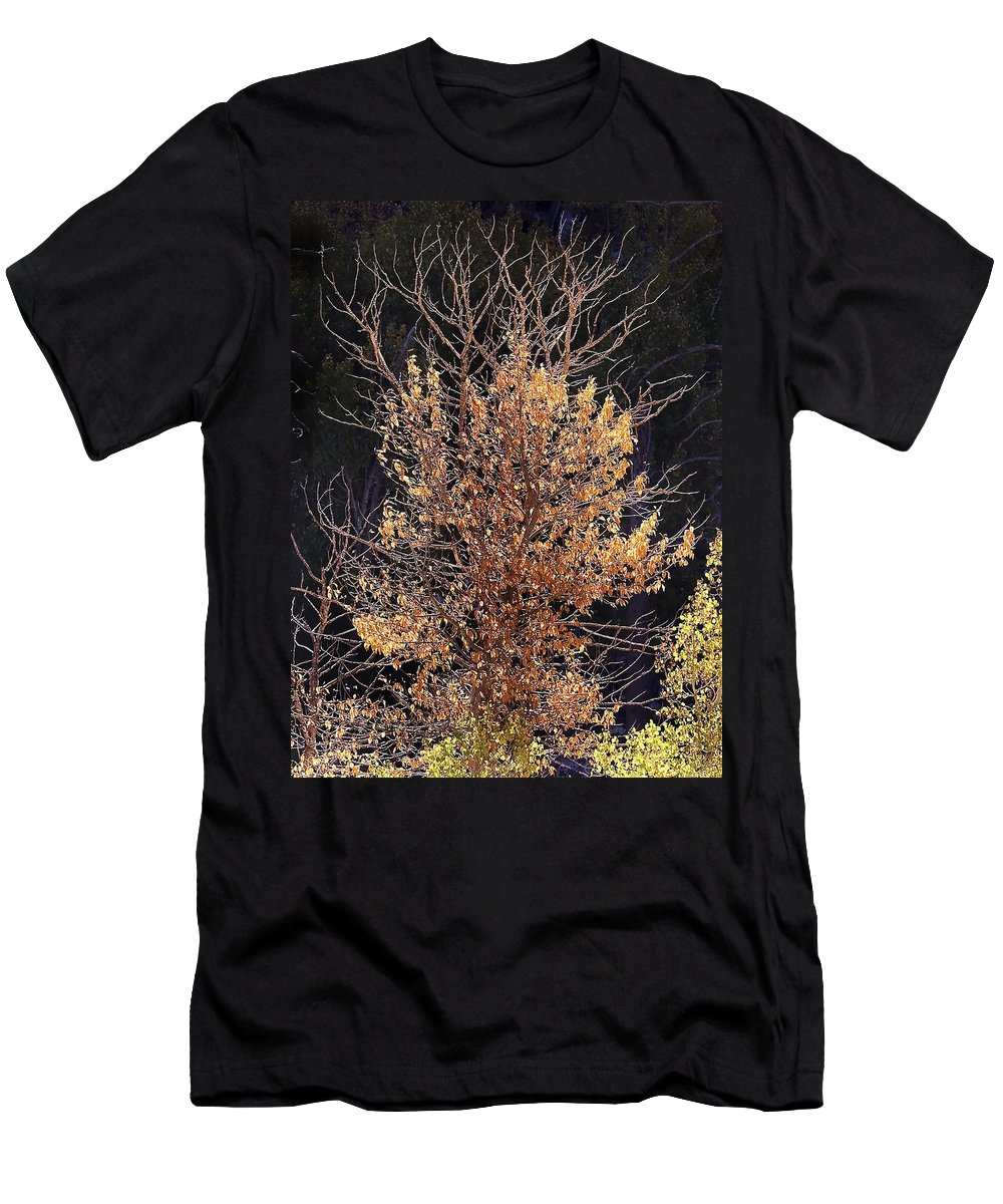 California Scenes Men's T-Shirt (Athletic Fit) featuring the photograph Final Fall by Norman Andrus