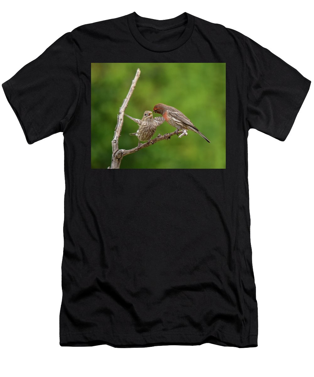 Linda Brody Men's T-Shirt (Athletic Fit) featuring the photograph Finch Feeding Time I by Linda Brody