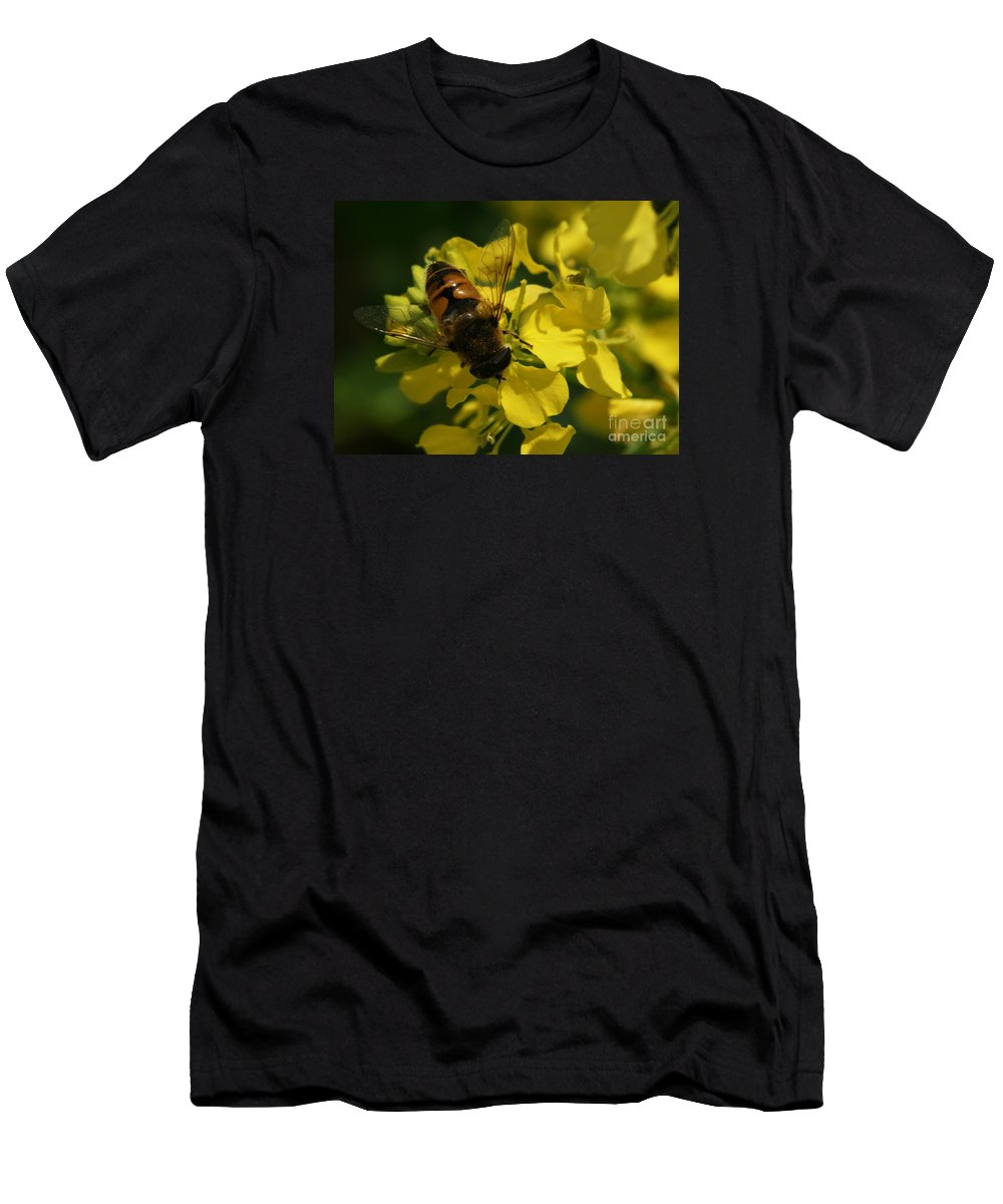 Bee Men's T-Shirt (Athletic Fit) featuring the photograph Finding Each Other by Linda Shafer