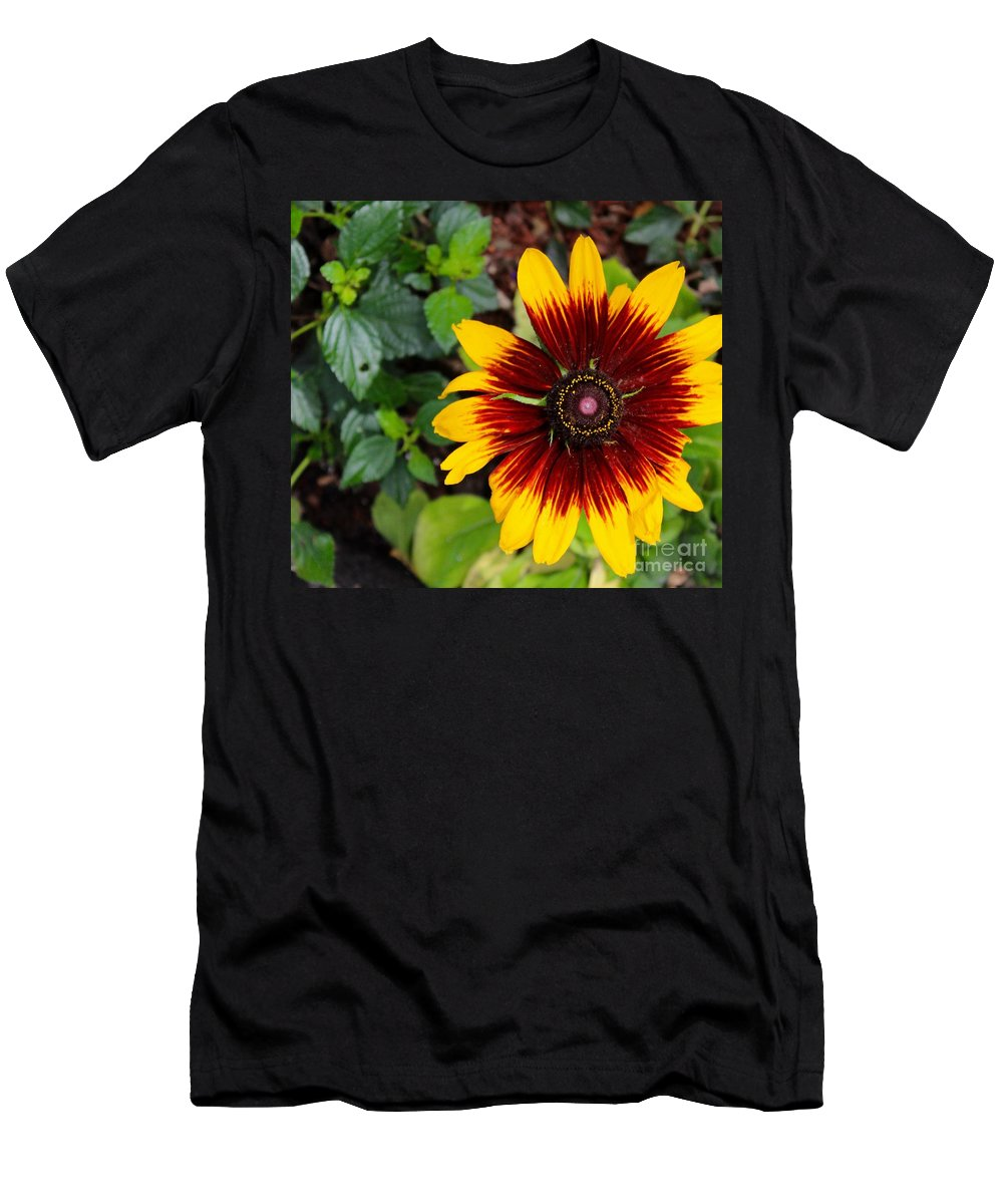 Sunflower Men's T-Shirt (Athletic Fit) featuring the photograph Firecracker Sunflower by Mesa Teresita