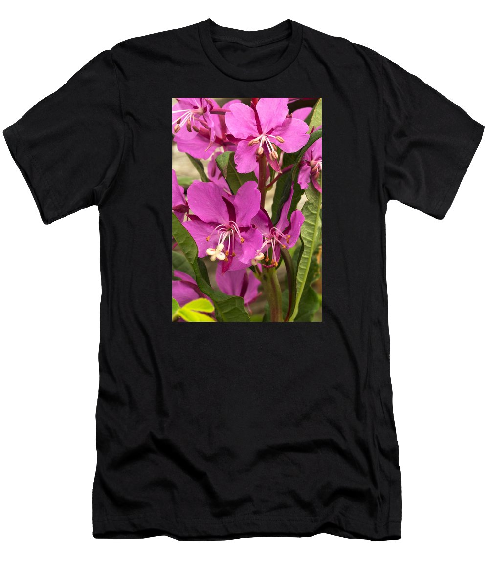 Nature Photography Men's T-Shirt (Athletic Fit) featuring the photograph Fireweed II by Amanda Kiplinger