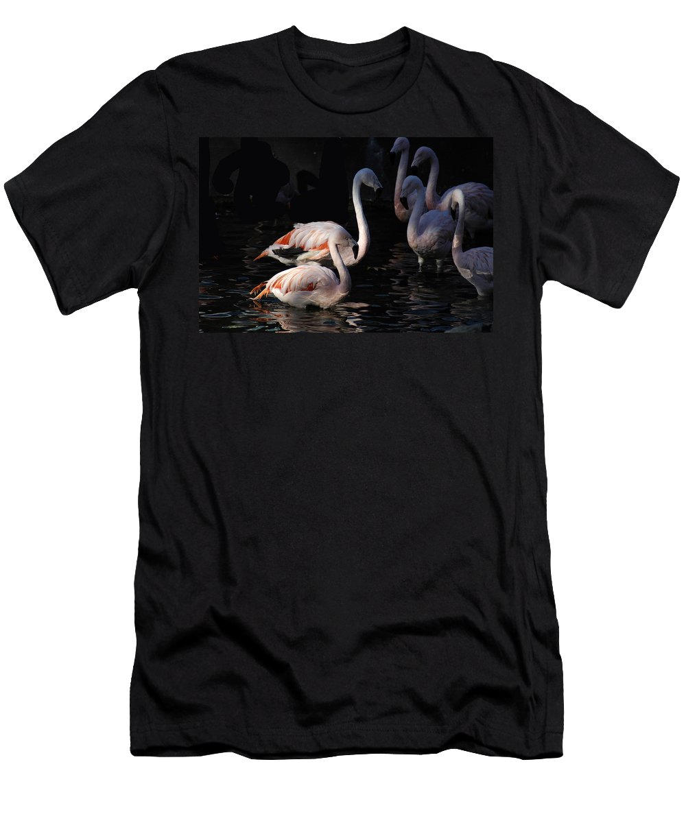 Flamingo Men's T-Shirt (Athletic Fit) featuring the photograph Flamingo Study - 2 by D'Arcy Evans