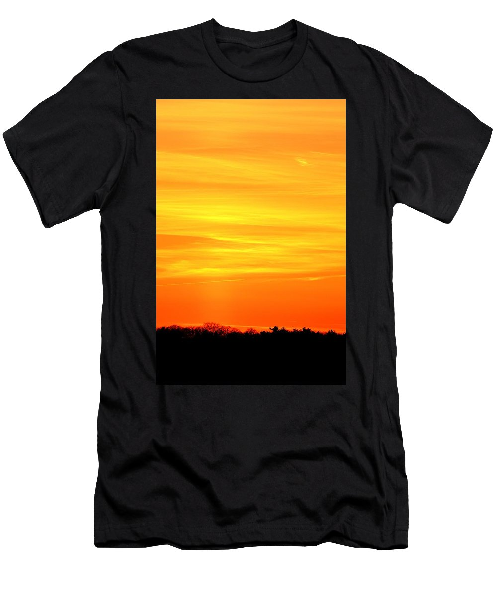 Abstract Men's T-Shirt (Athletic Fit) featuring the photograph Flight Heading North by Lyle Crump