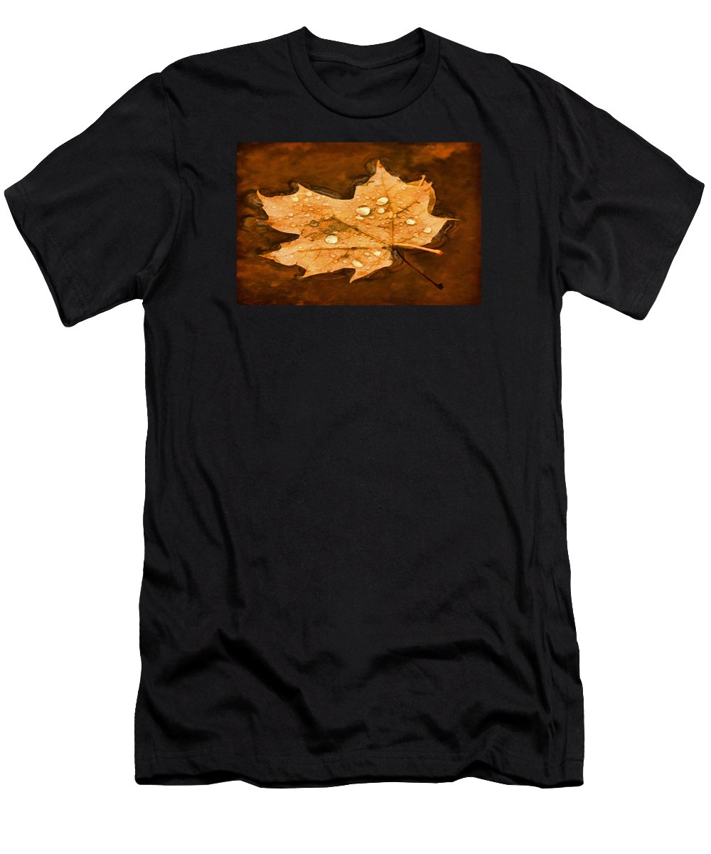 Maple Leaf Men's T-Shirt (Athletic Fit) featuring the photograph Floating Maple Leaf Pnt by Theo O'Connor