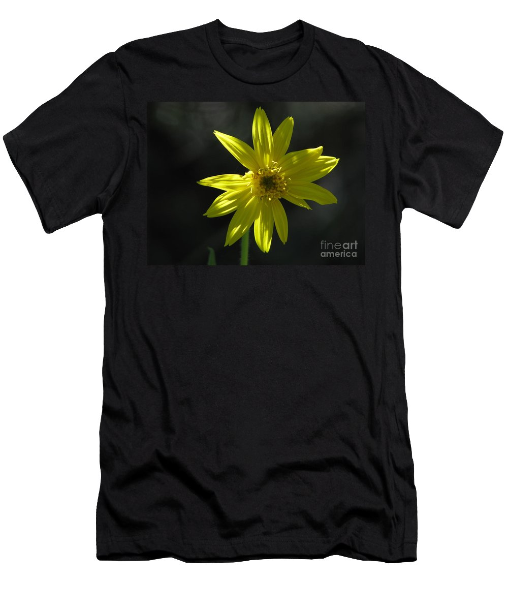 Light Men's T-Shirt (Athletic Fit) featuring the photograph Floral by Amanda Barcon