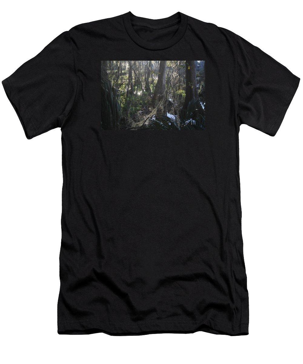 Landscape Men's T-Shirt (Athletic Fit) featuring the photograph Florida Winter by Elsie Figuora