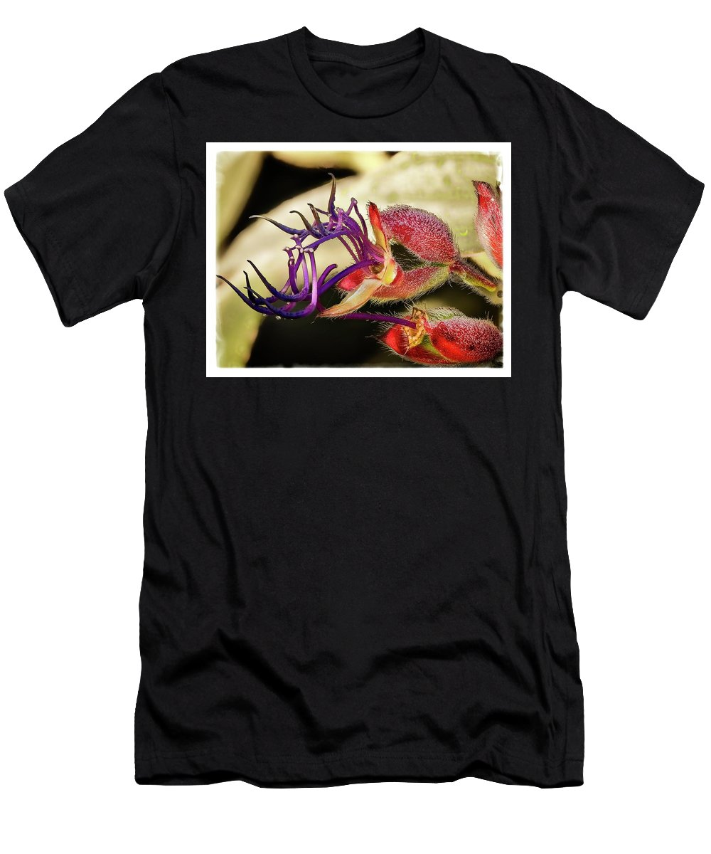Purple Men's T-Shirt (Athletic Fit) featuring the photograph Flower 55f, Ny, 16 by Richard Xuereb
