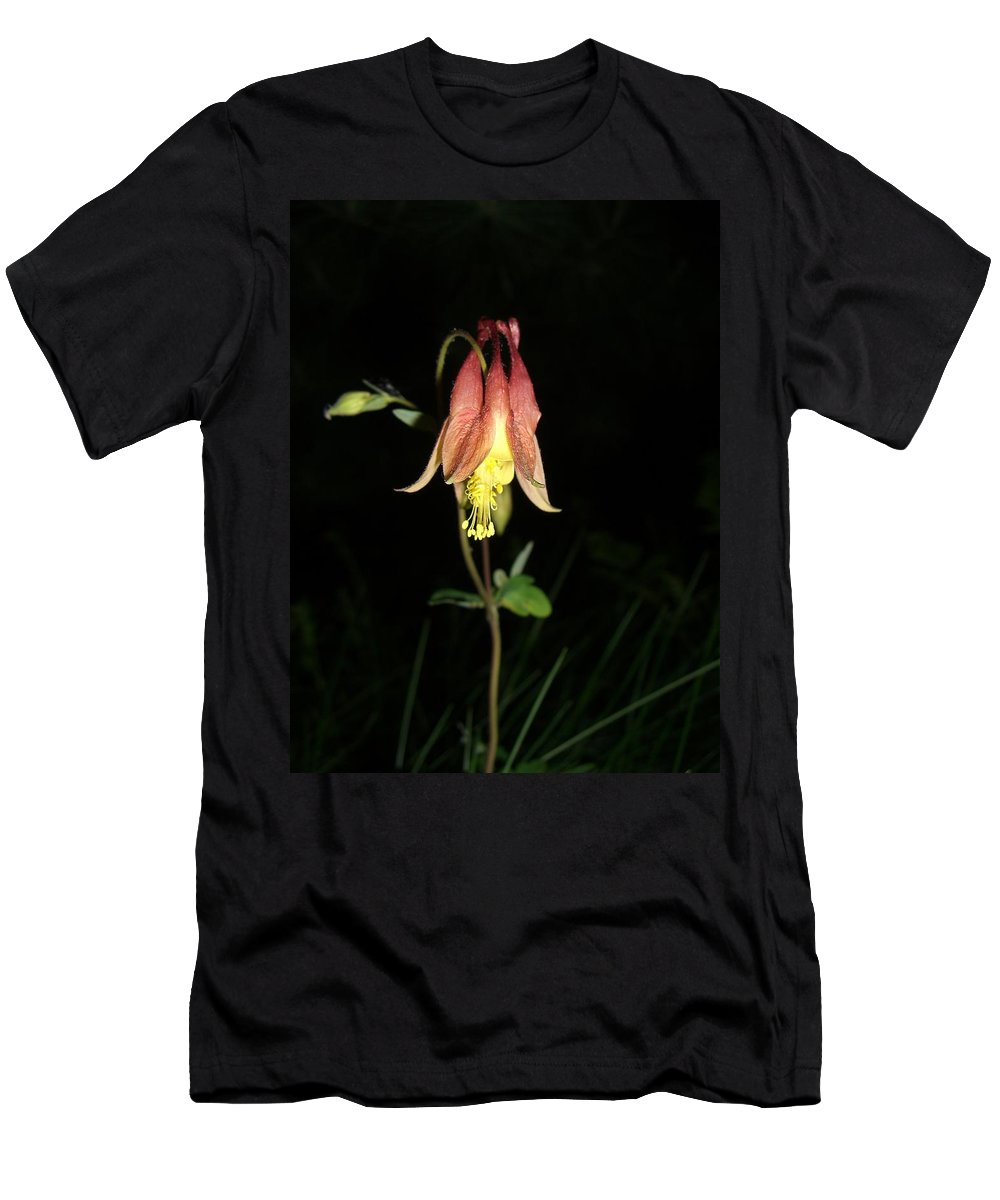 Flower T-Shirt featuring the photograph Flower by Amanda Kabat
