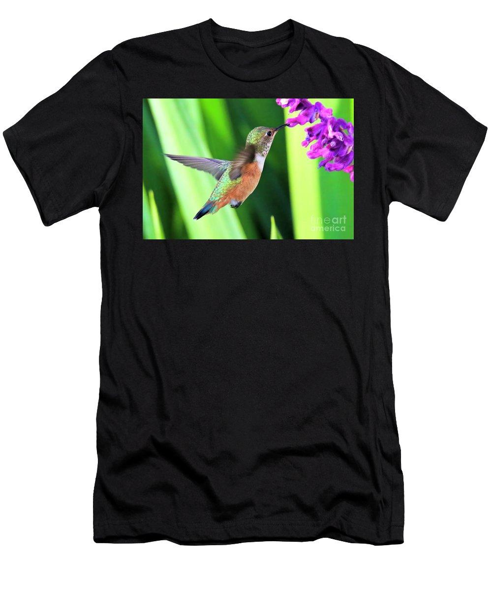 Hummingbird Men's T-Shirt (Athletic Fit) featuring the photograph Flower Kisser by Edita De Lima
