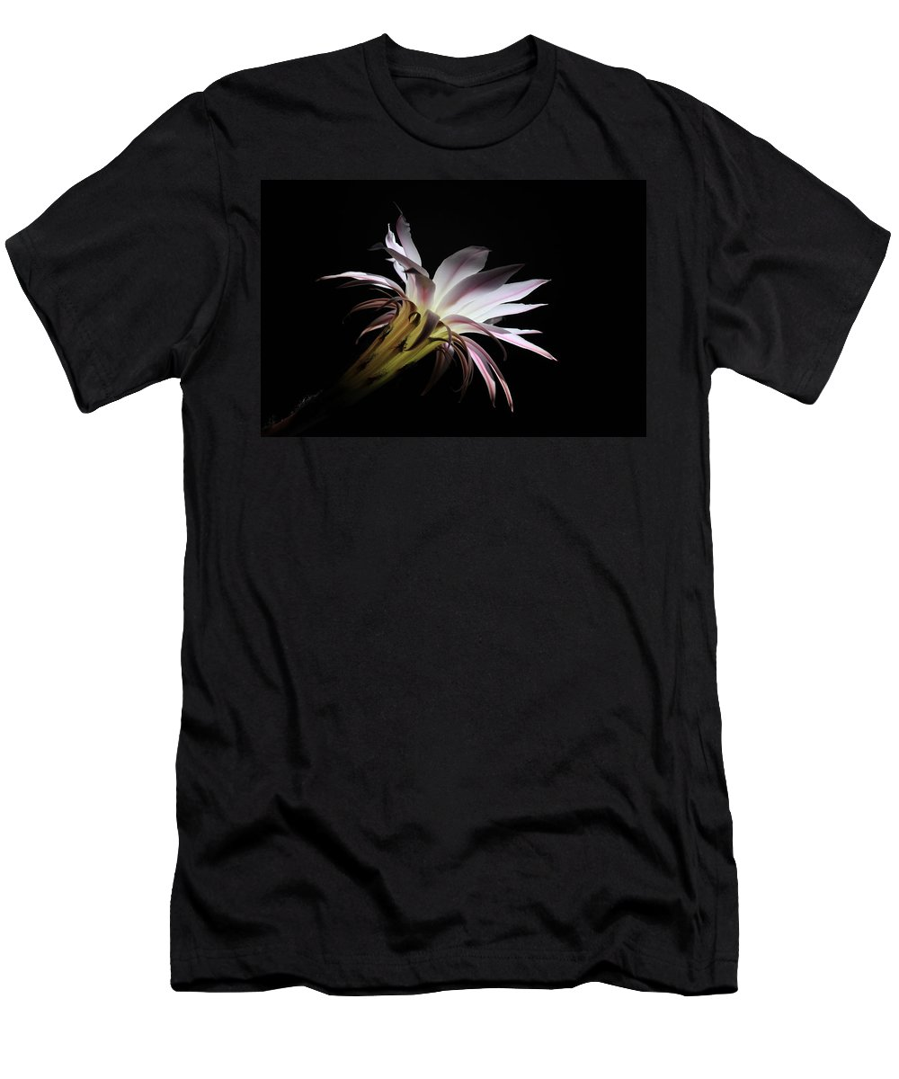 Flower Of Cactus Men's T-Shirt (Athletic Fit) featuring the photograph Flower Of Cactus by Mitko Peroski
