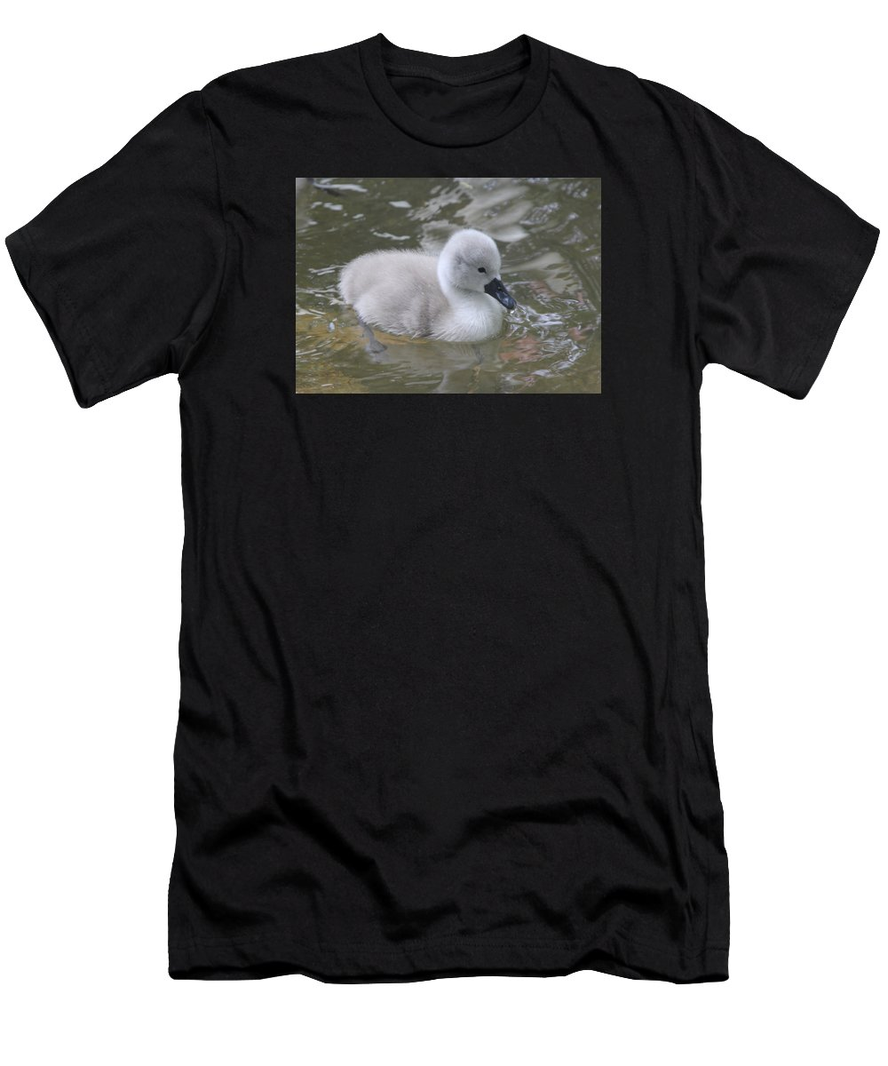 Signet Men's T-Shirt (Athletic Fit) featuring the photograph Fluffy Signet by Kyle Hillman