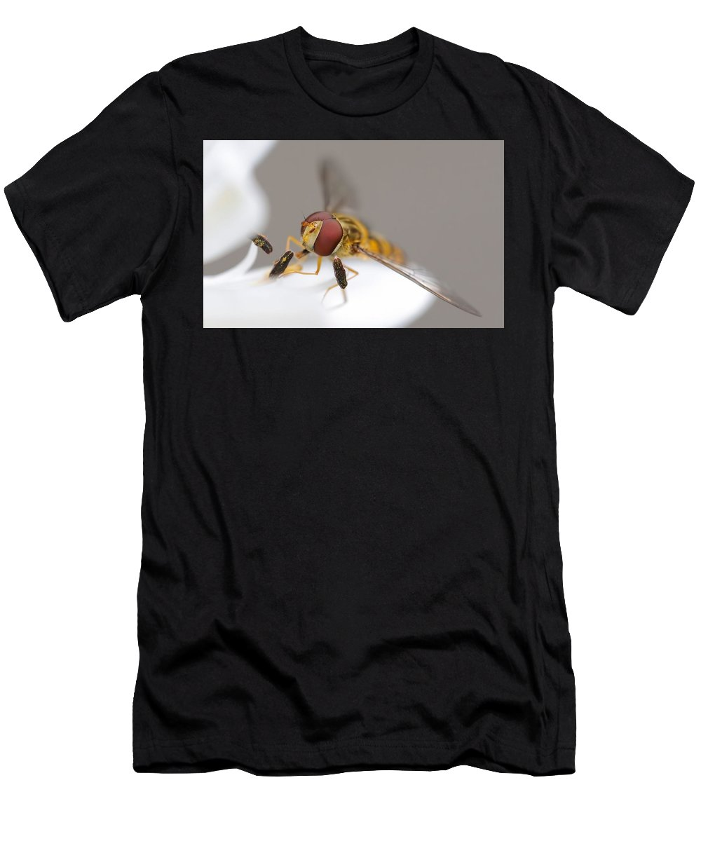Fly Men's T-Shirt (Athletic Fit) featuring the digital art Fly by Dorothy Binder