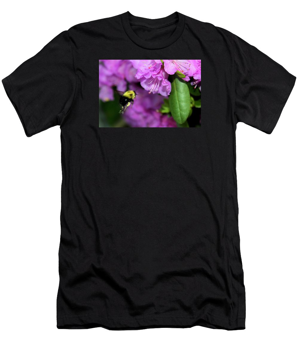 Bumble Bee Men's T-Shirt (Athletic Fit) featuring the photograph Flying Bee Collecting Pollen by Anita Hiltz