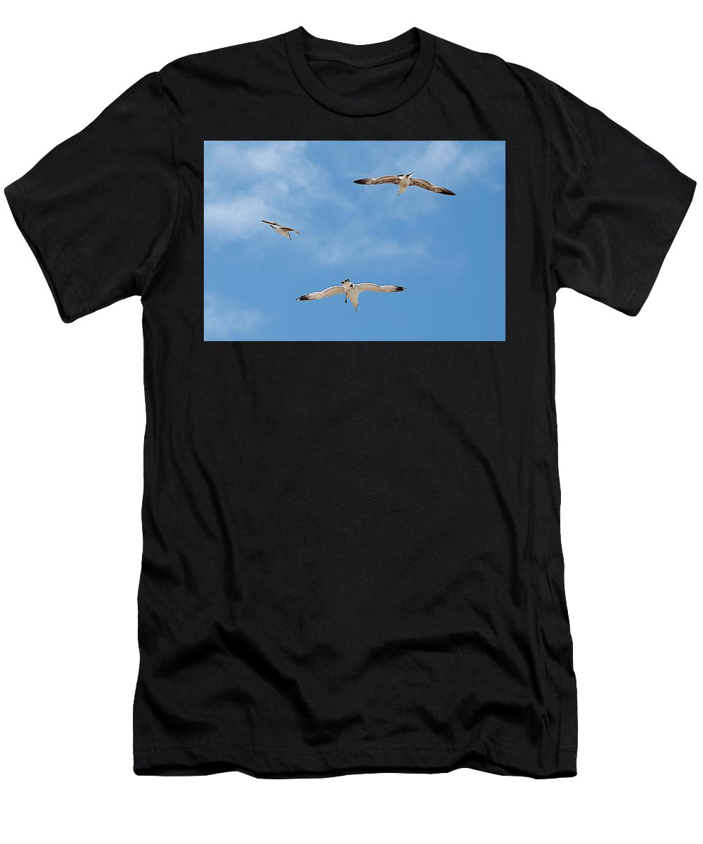 Bird Men's T-Shirt (Athletic Fit) featuring the photograph Flying By by Jay Billings