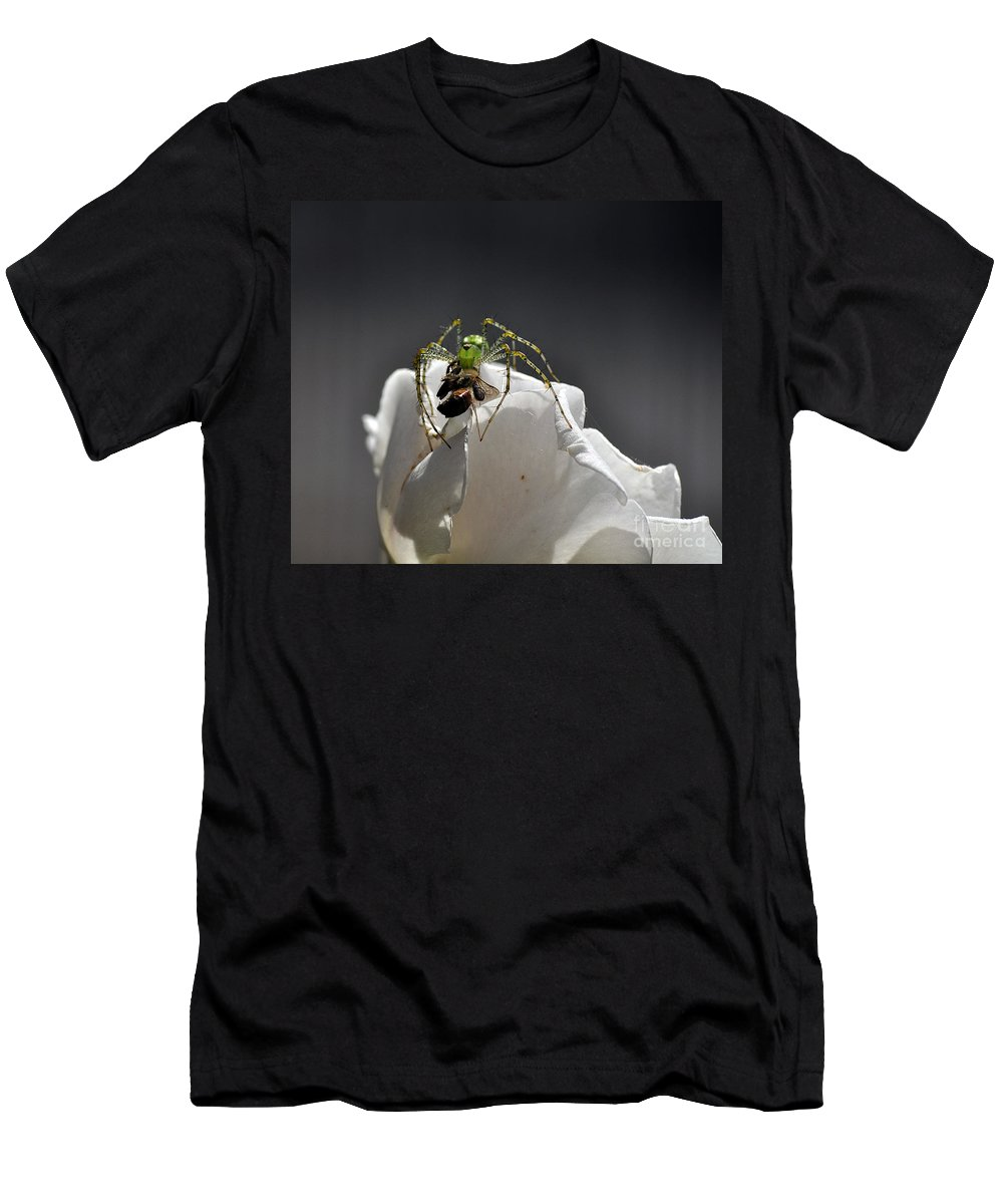 Clay Men's T-Shirt (Athletic Fit) featuring the photograph Flys At The Picnic by Clayton Bruster