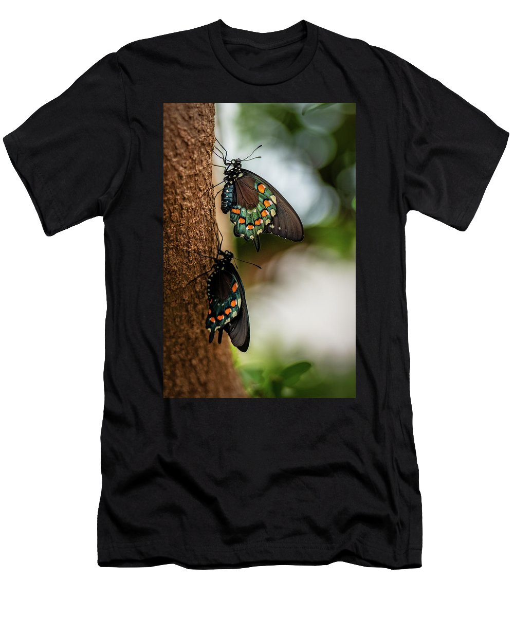 Butterfly Men's T-Shirt (Athletic Fit) featuring the photograph Follow The Leader by Cindy Lark Hartman