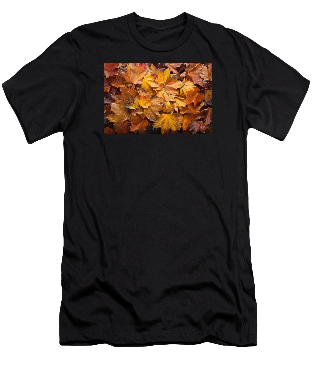 Maple Men's T-Shirt (Athletic Fit) featuring the photograph Forest Floor by Steve Gadomski