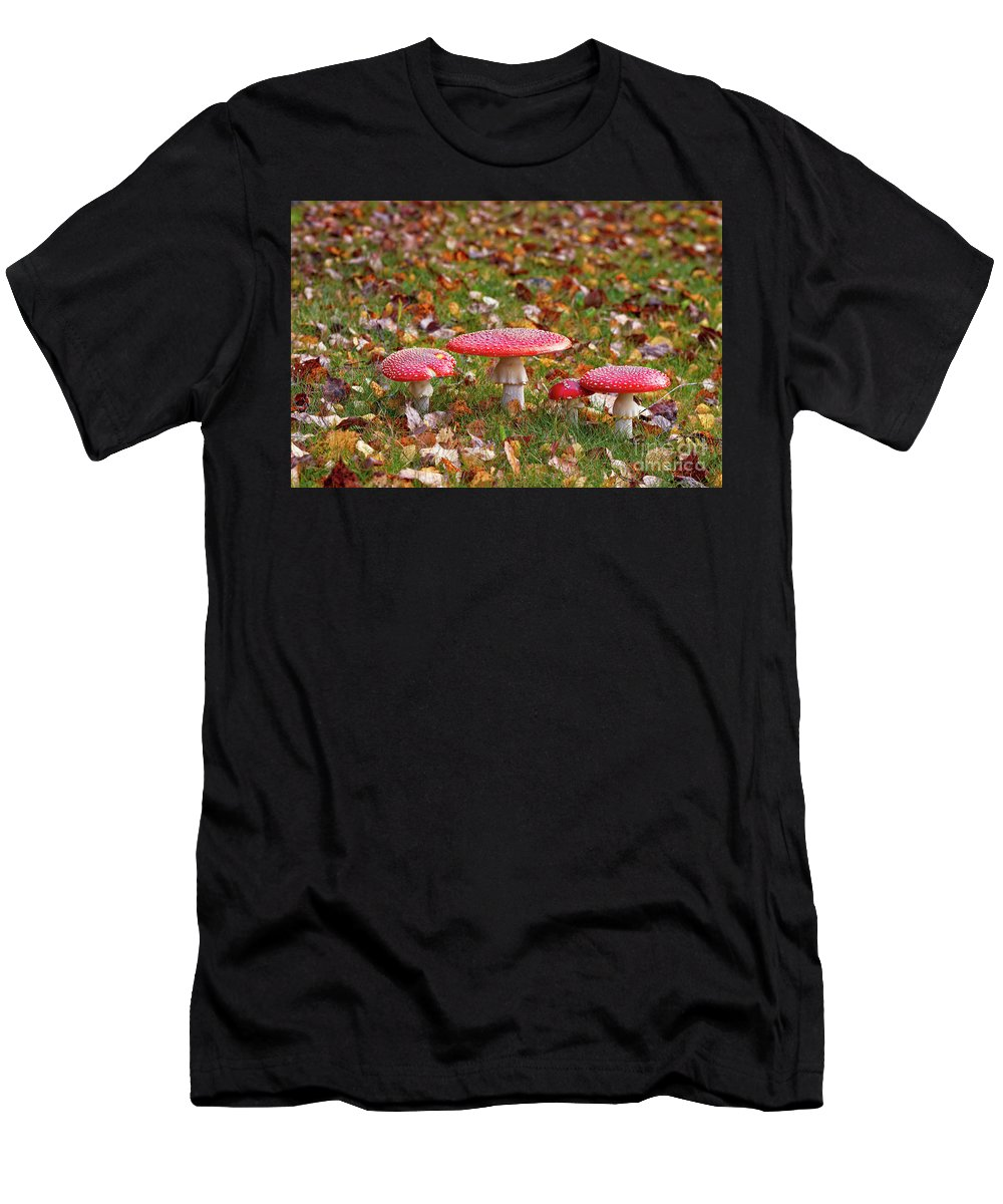 Amanita Muscaria Men's T-Shirt (Athletic Fit) featuring the photograph Four Fly Agarics Among Dead Leaves by Jukka Heinovirta