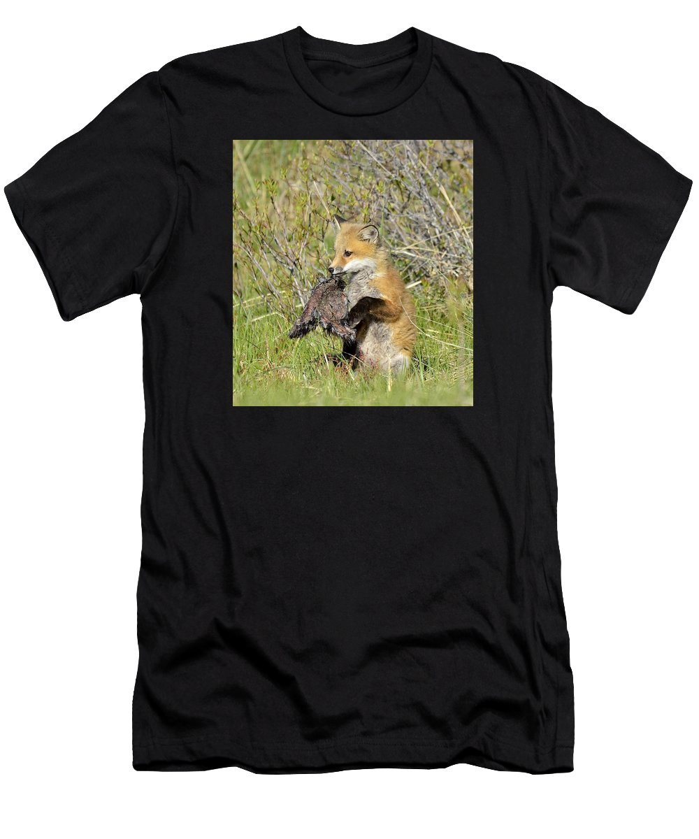 Fox Wildlife Men's T-Shirt (Athletic Fit) featuring the photograph Fox Dinner by Christine Russell