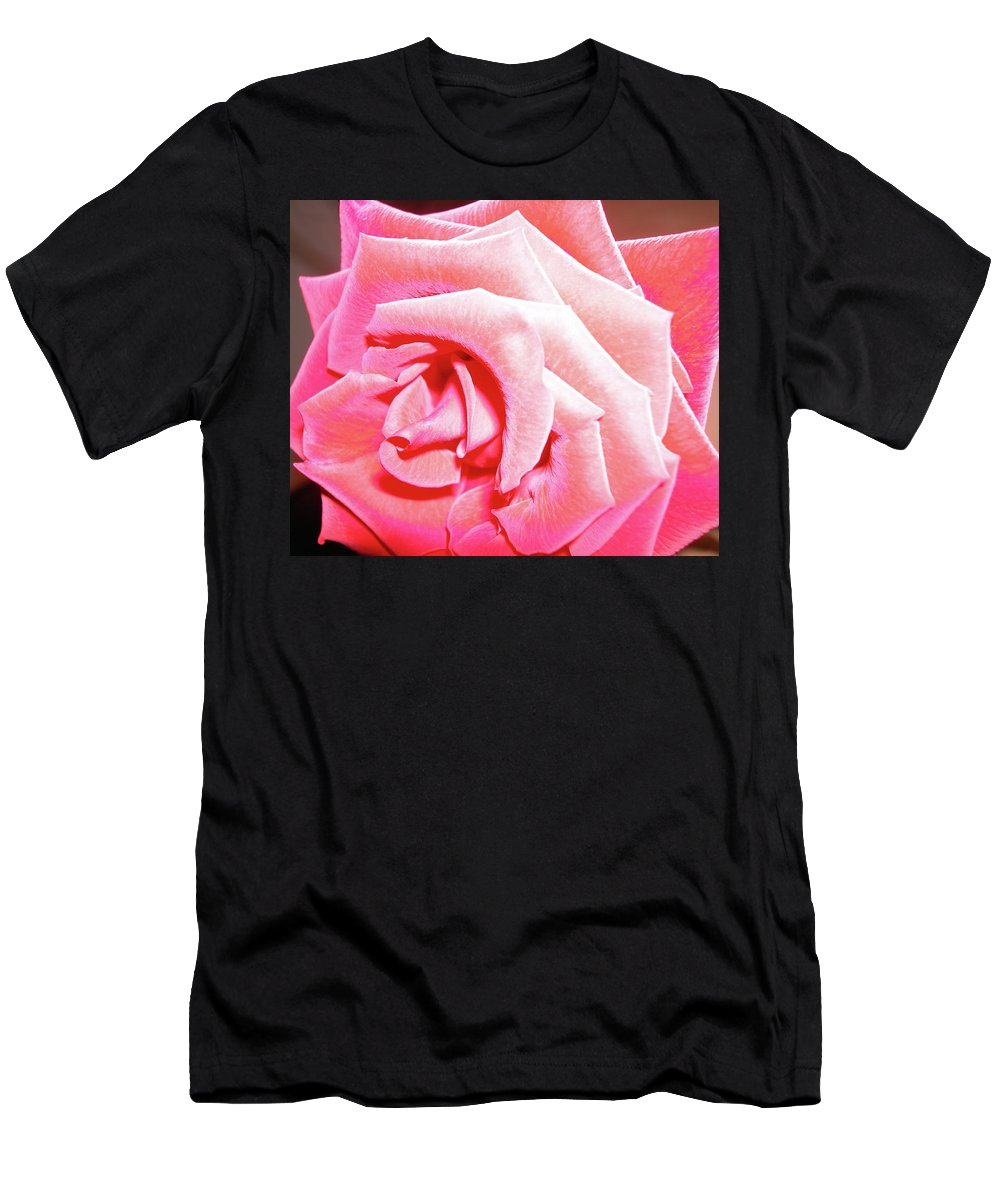 Rose Men's T-Shirt (Athletic Fit) featuring the photograph Fragrant Rose by Marie Hicks