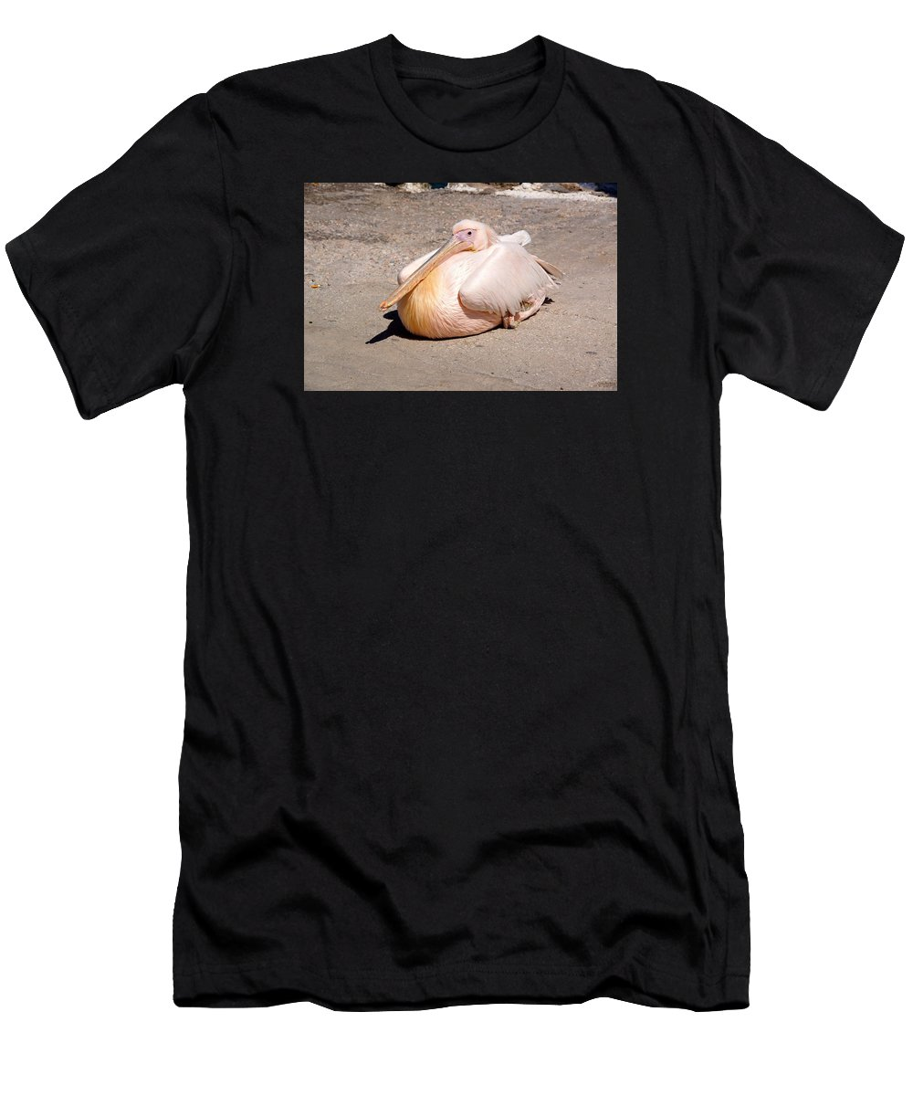 Bird Men's T-Shirt (Athletic Fit) featuring the photograph Fred by Ron Koivisto