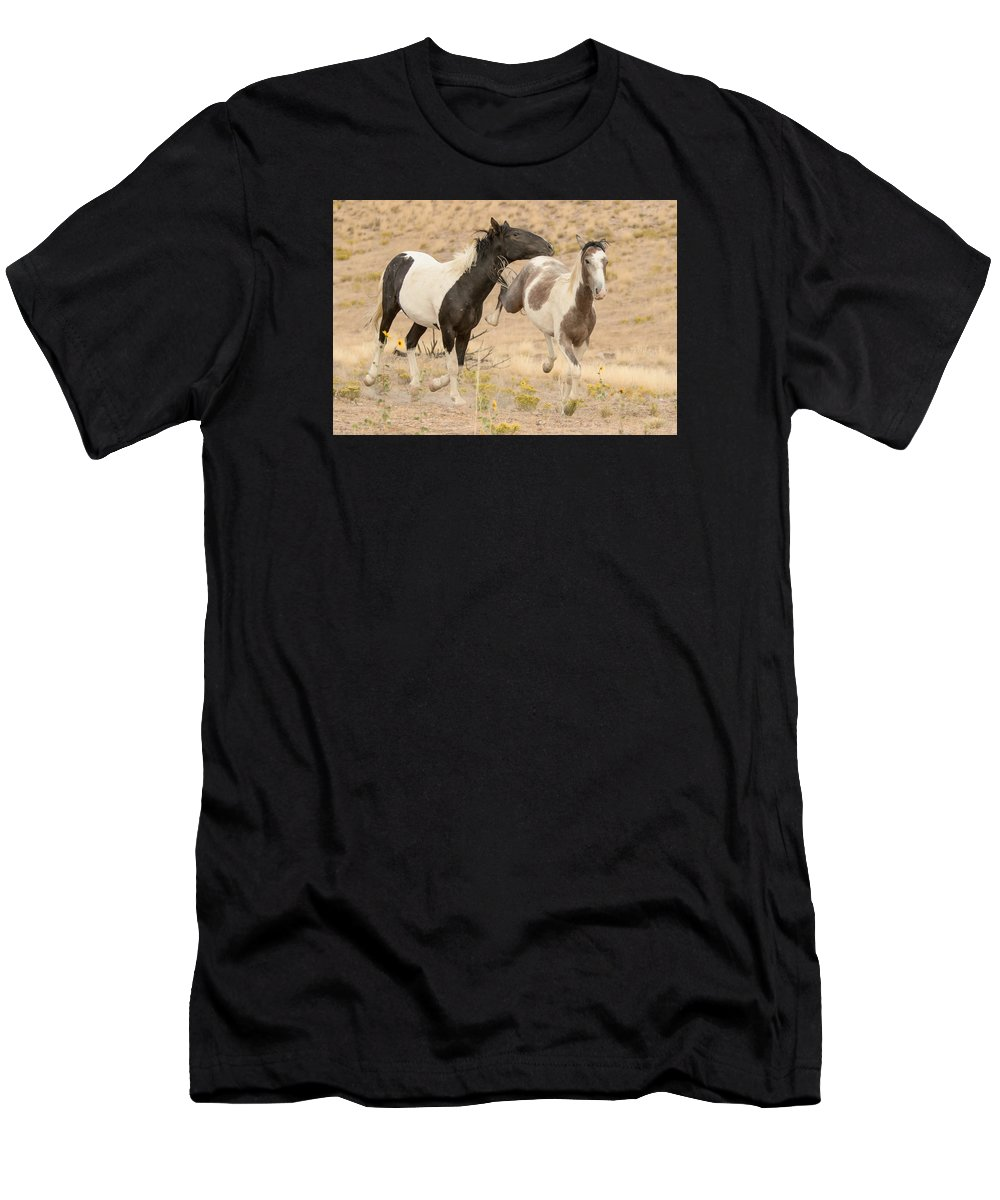 Wild Horse Men's T-Shirt (Athletic Fit) featuring the photograph Free Life by Kent Keller