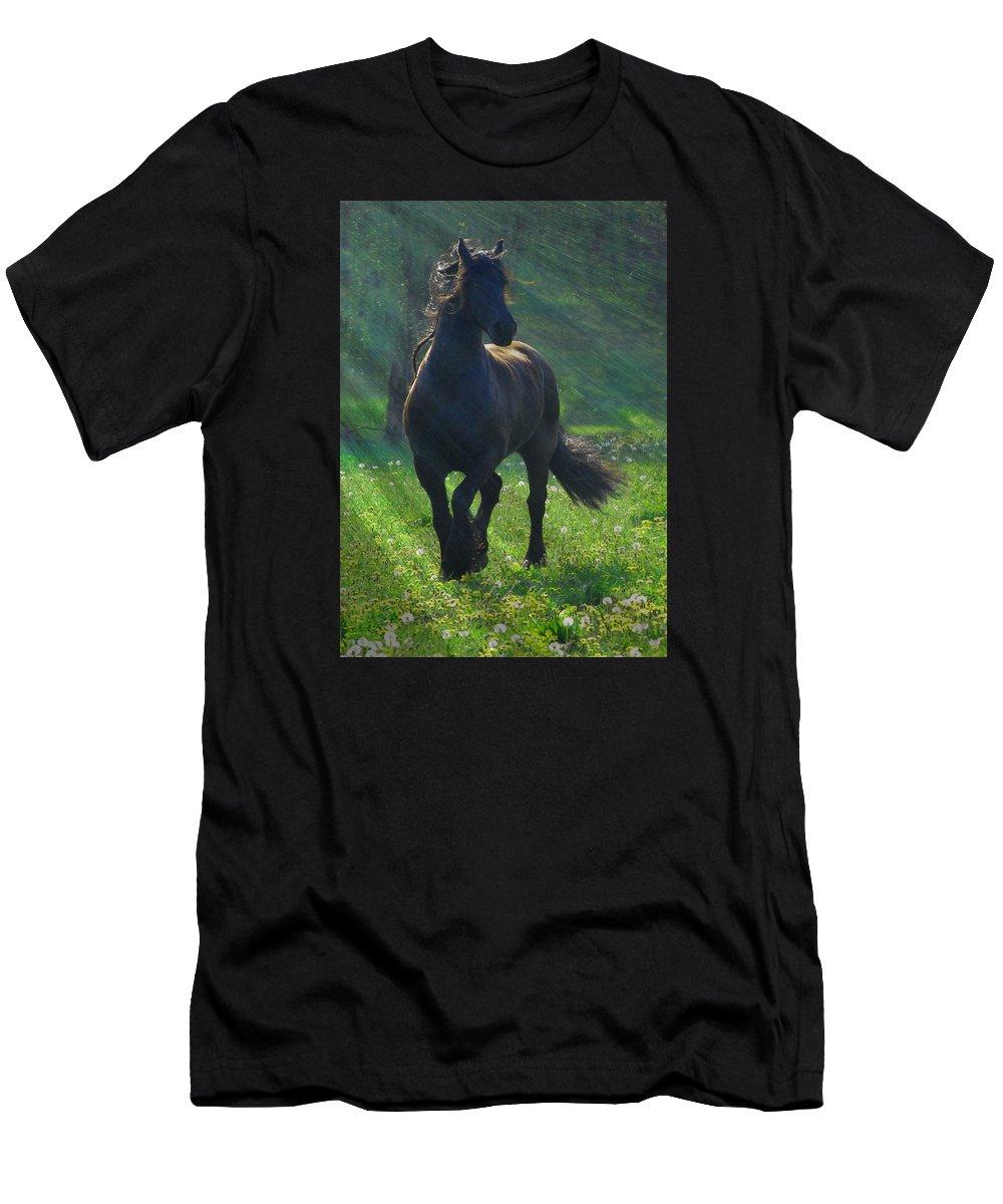 Horses T-Shirt featuring the photograph Friesian Sun by Fran J Scott