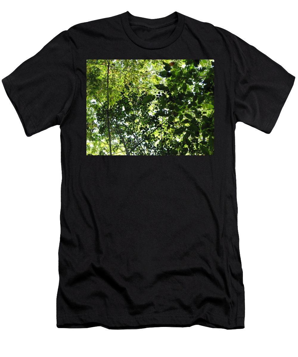 Leaf T-Shirt featuring the photograph From Above by Creative Solutions RipdNTorn