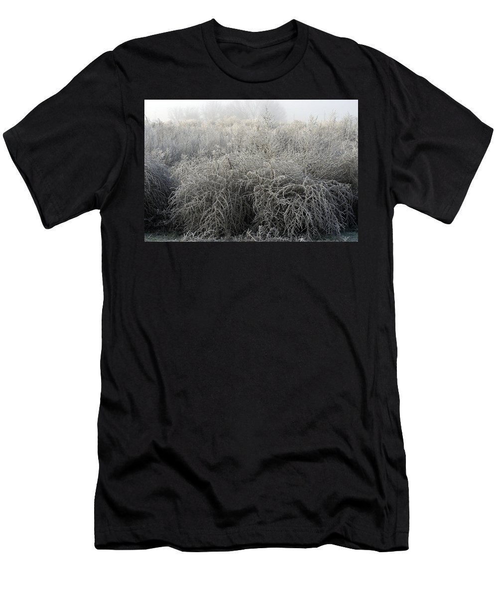 Winter Men's T-Shirt (Athletic Fit) featuring the photograph Frosted by D'Arcy Evans