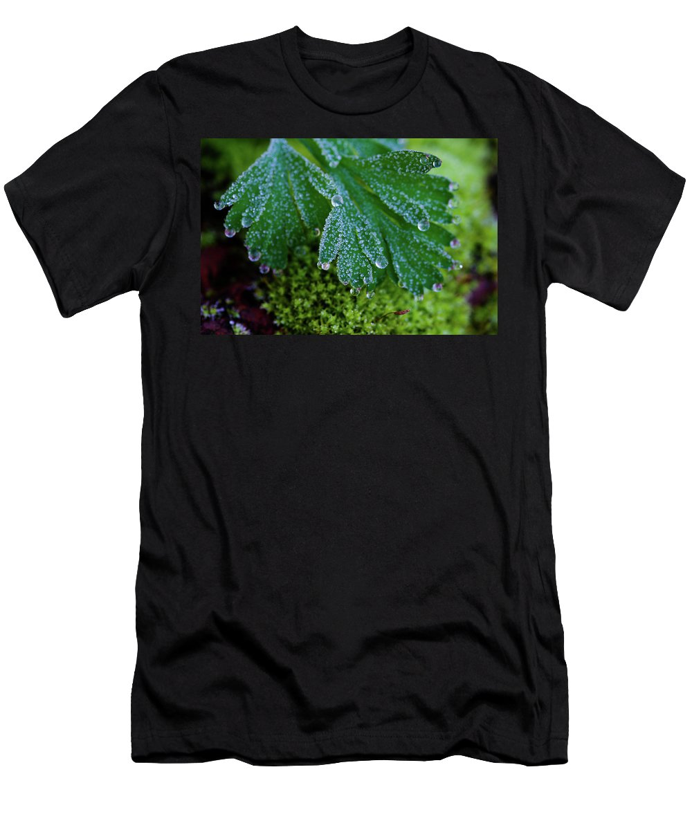 Dew Men's T-Shirt (Athletic Fit) featuring the photograph Frosty Dewdrops by Teresa Herlinger