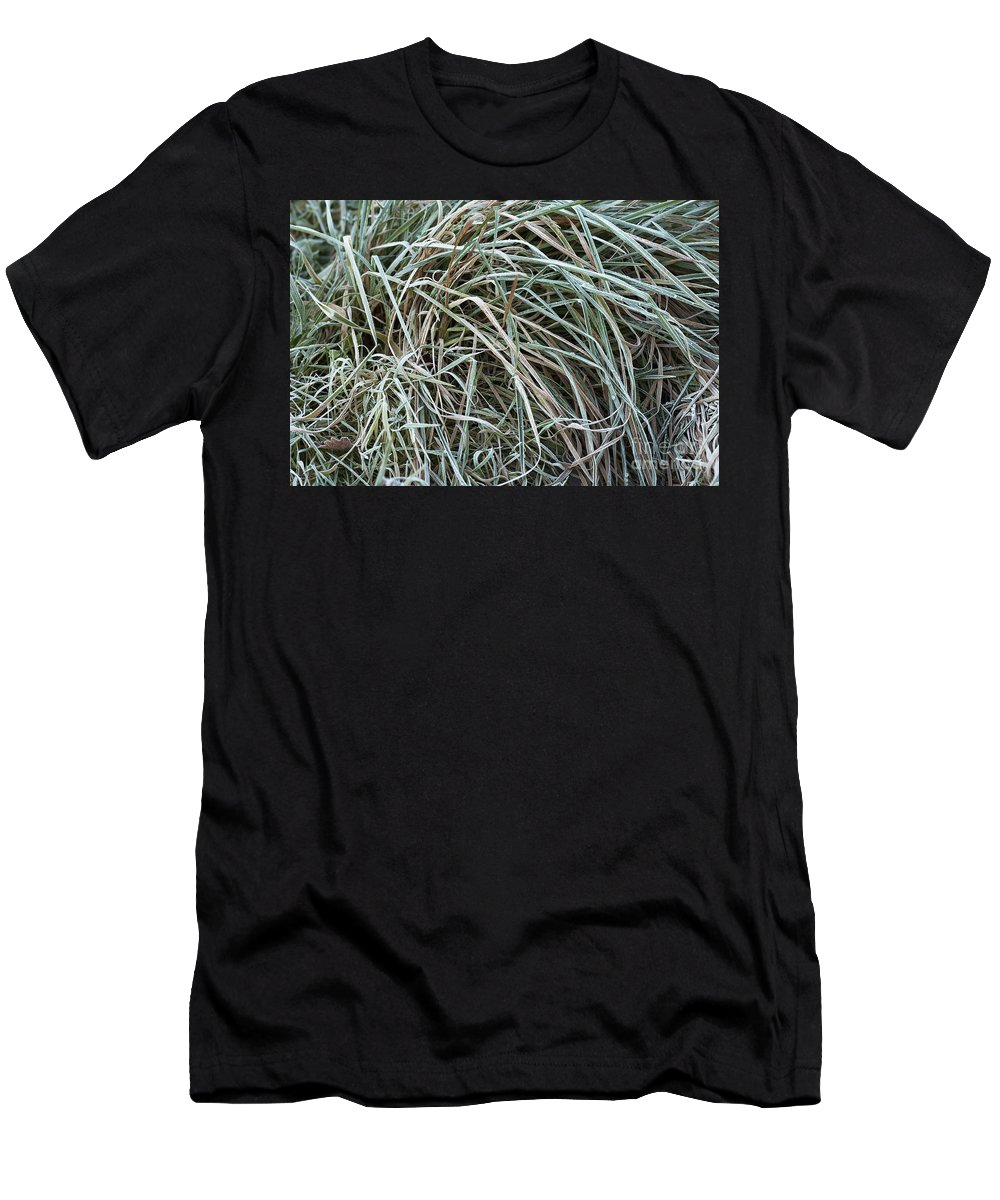 Detail Men's T-Shirt (Athletic Fit) featuring the photograph Frozen Grass - Ground Frost by Michal Boubin