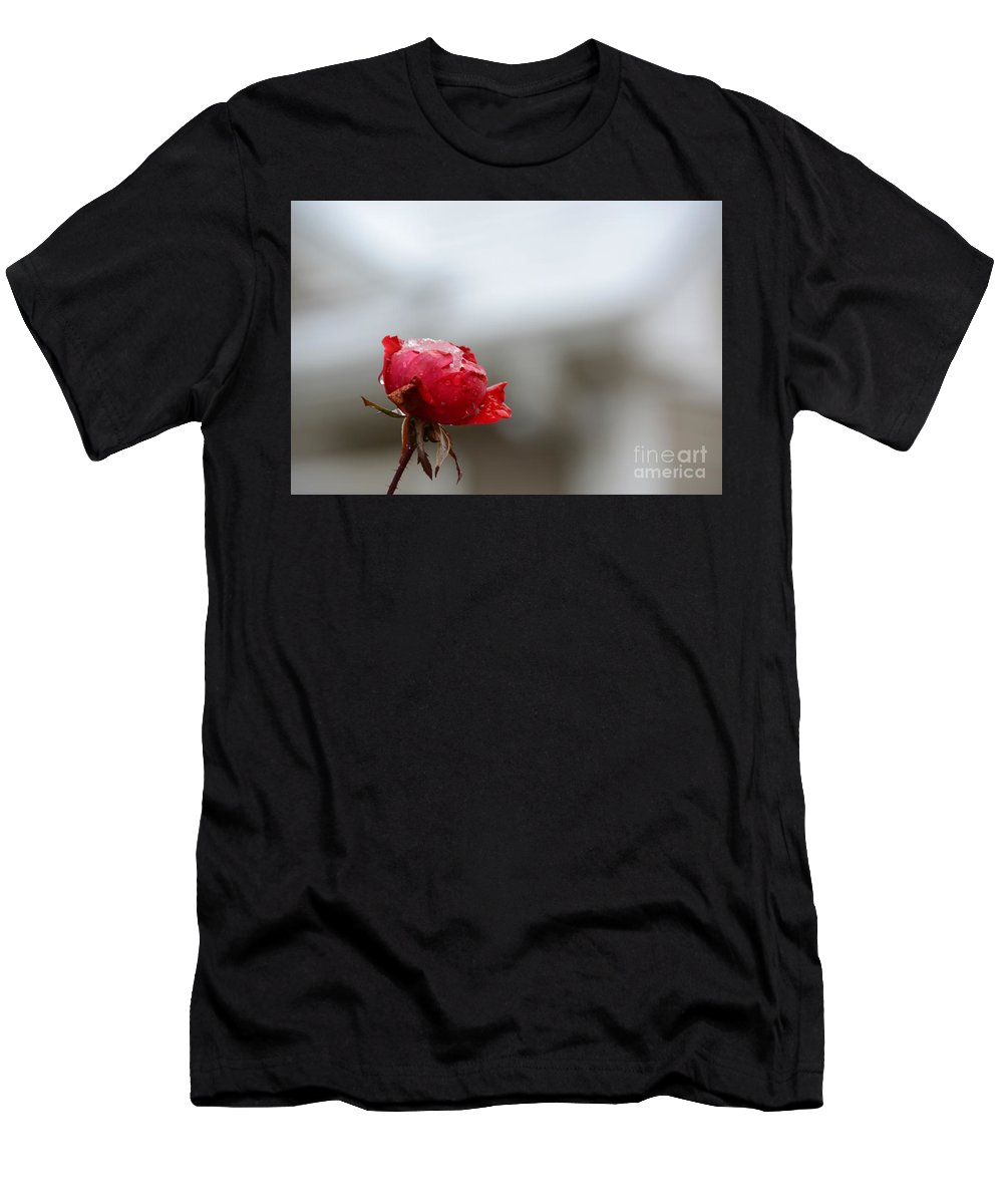 Frozen Men's T-Shirt (Athletic Fit) featuring the photograph Frozen Red Rose- Macro by Adrian DeLeon