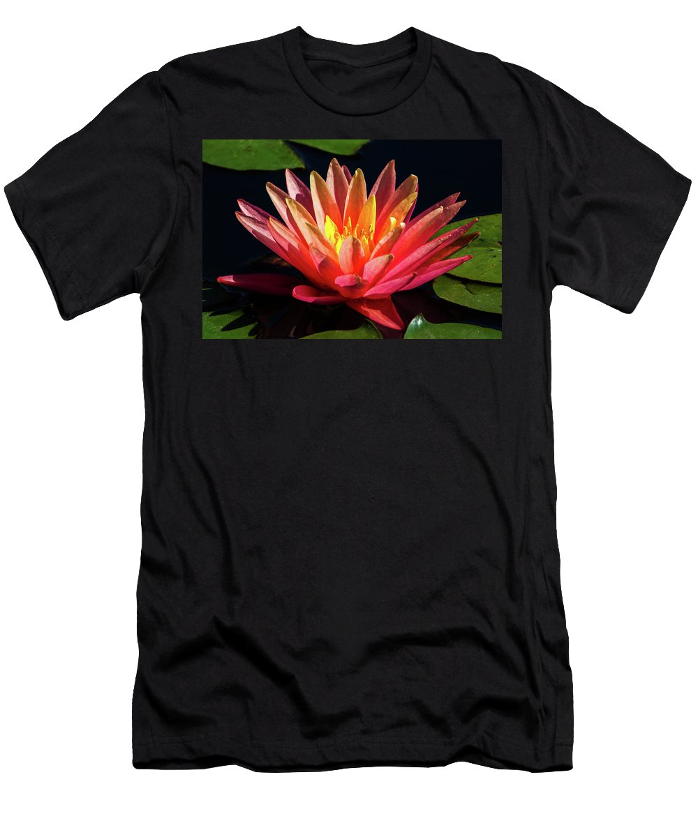 Flowers Men's T-Shirt (Athletic Fit) featuring the photograph Fushia Waterlily 1 by David Werner