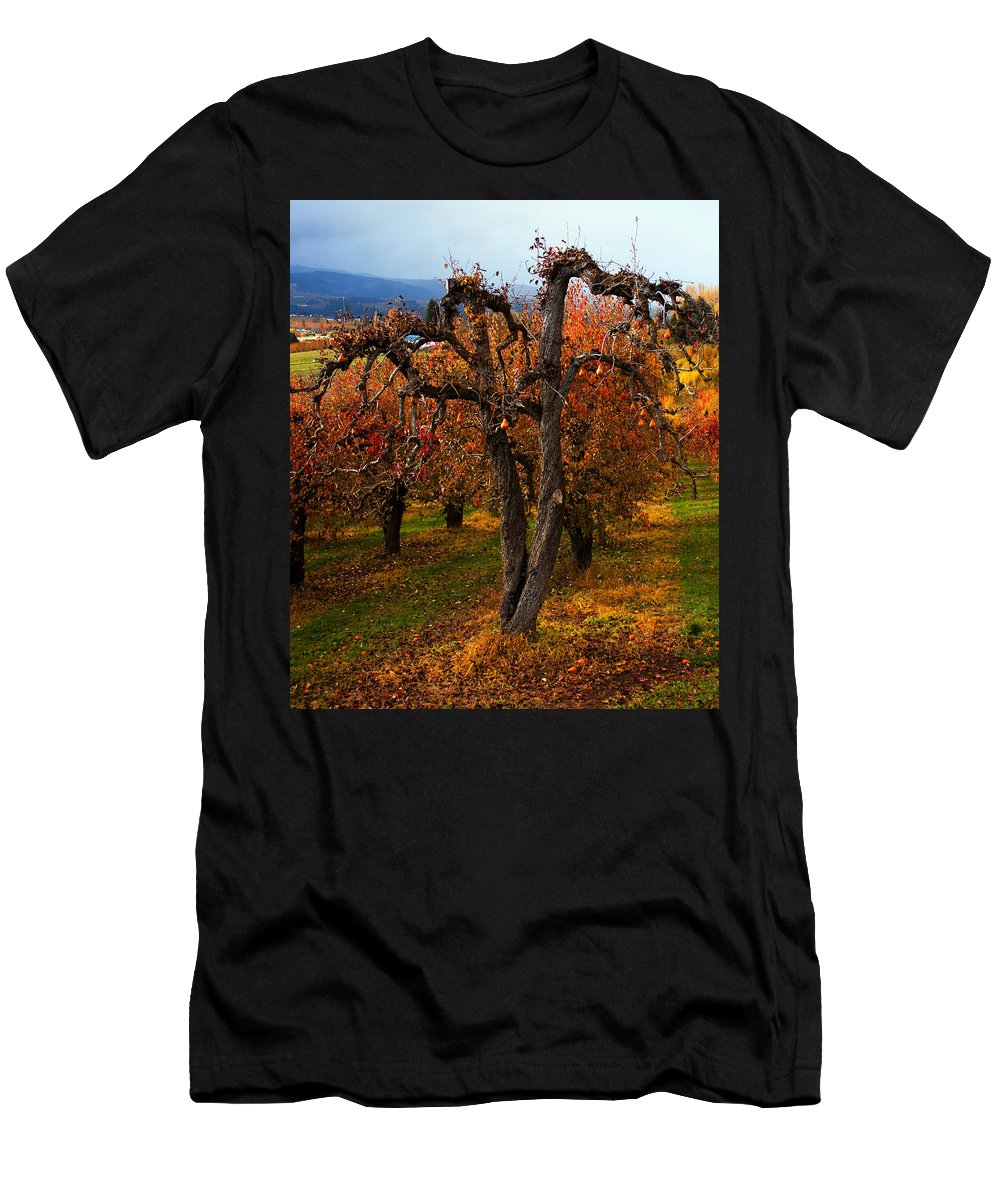 Pear Men's T-Shirt (Athletic Fit) featuring the photograph Gabriel's Message by Merrill Beck