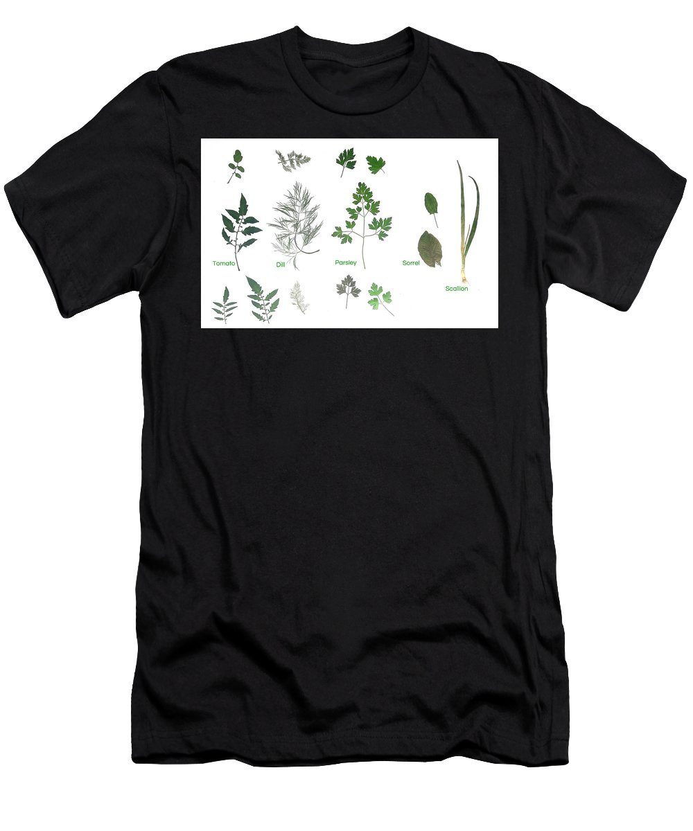 Garden Leaves Men's T-Shirt (Athletic Fit) featuring the photograph Garden Herbs by Tibi K