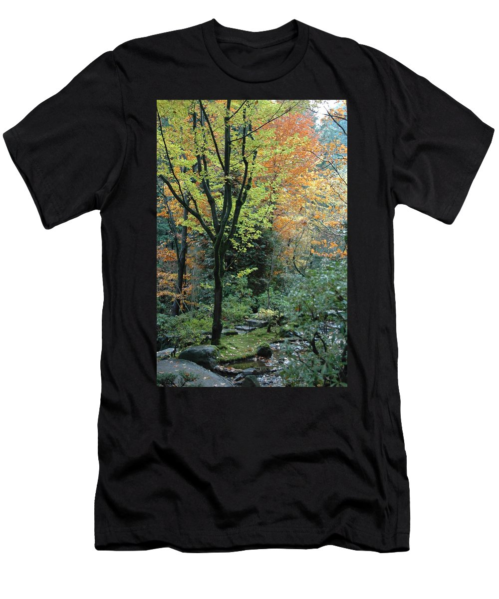 Fall Men's T-Shirt (Athletic Fit) featuring the photograph Garden Trees by Sara Stevenson