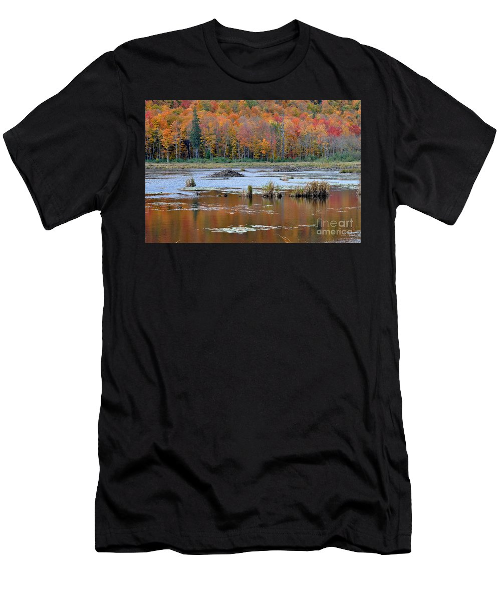 Gatineau Park Men's T-Shirt (Athletic Fit) featuring the photograph Gatineau Fall by Denise Tipton